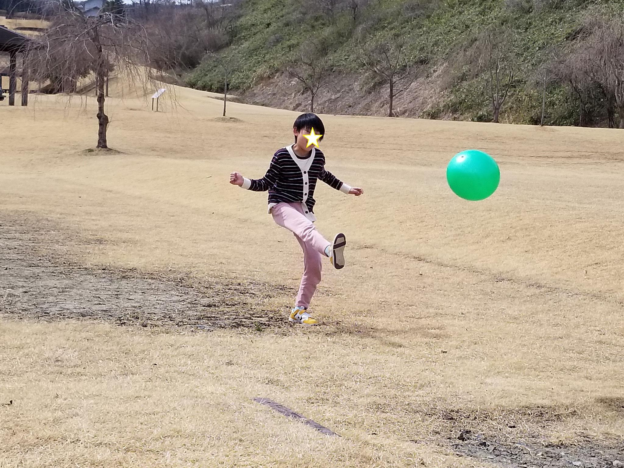 広い芝生を独り占め(?)