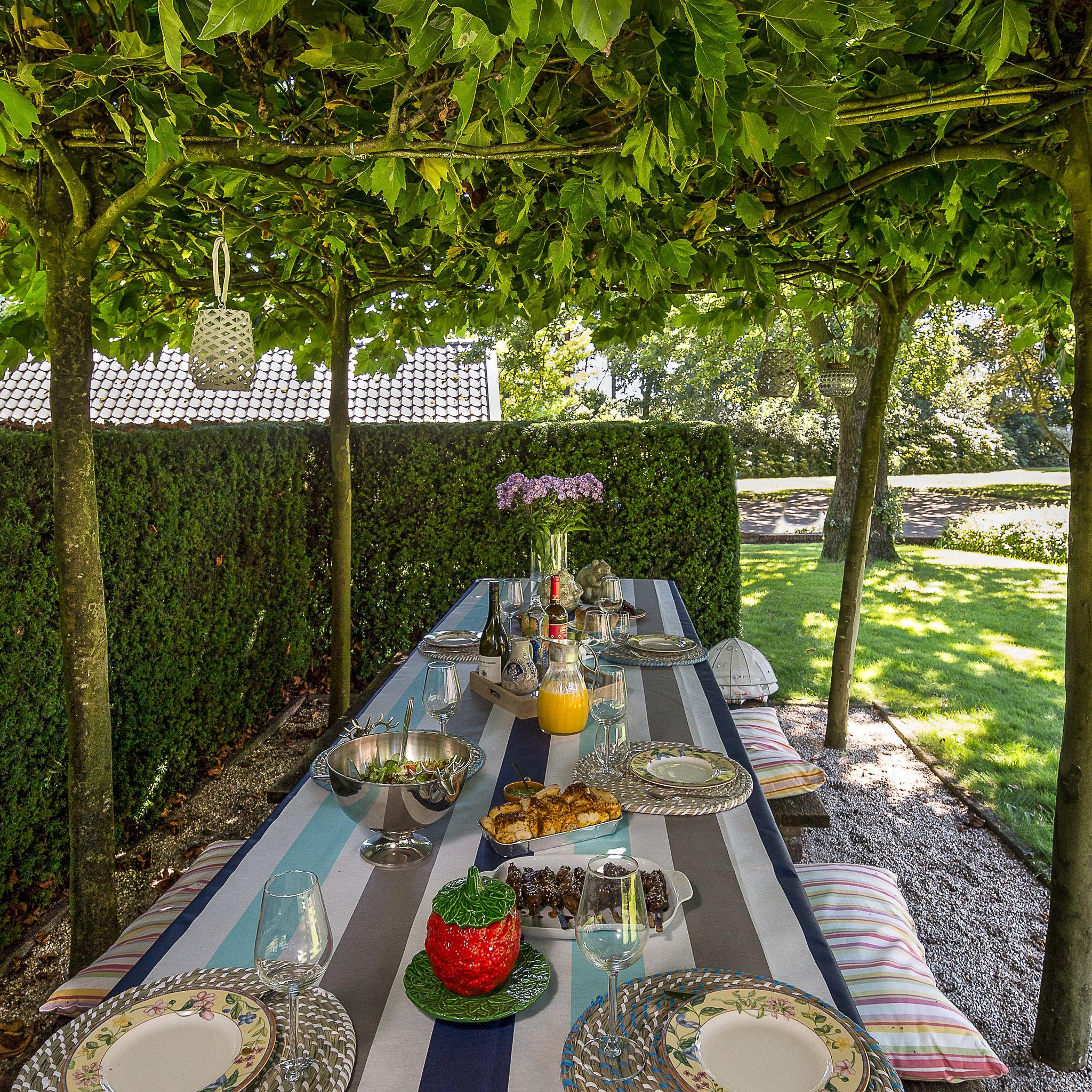 Genieten onder de platanen: ontbijt, lunch, diner, barbecue... u mag zelf kiezen