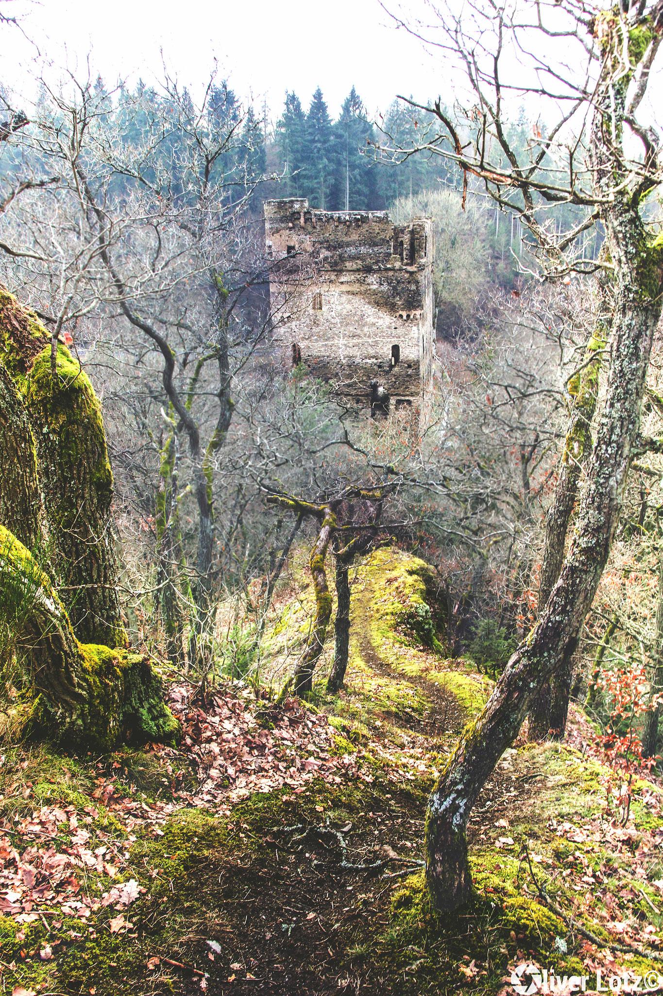 Burgruine Balduinseck vom Hexenhügel betrachtet