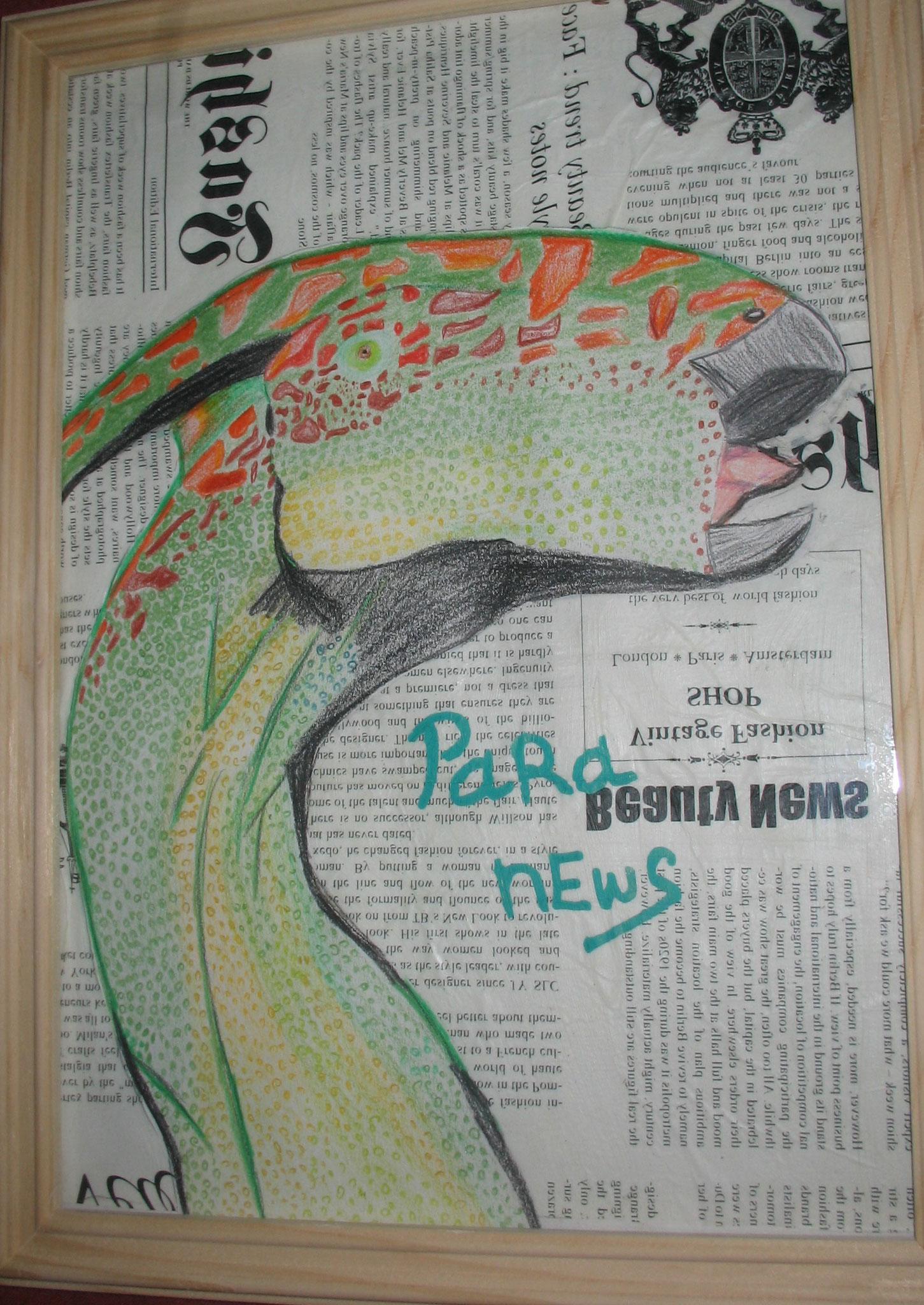 Para News (Collage: Aquarellstifte auf Decoupage)