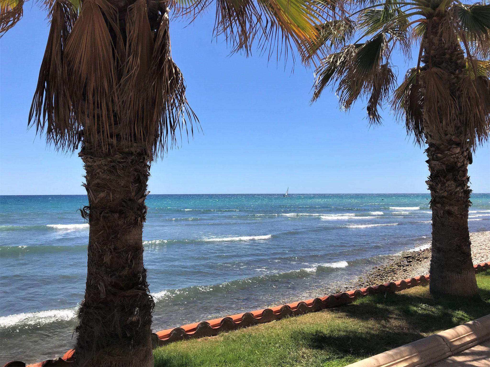 Der Wechsel hat sich gelohnt: Sonnenschein und Palmen in Sitges.