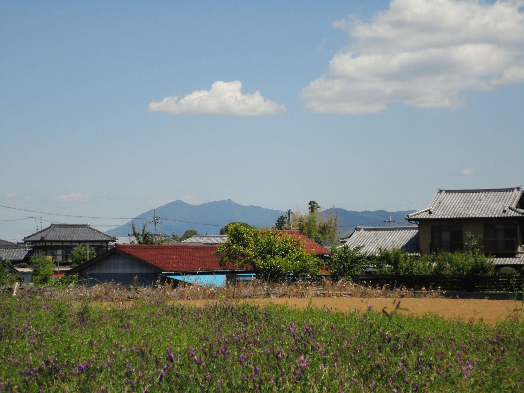 遠方に筑波山を望む