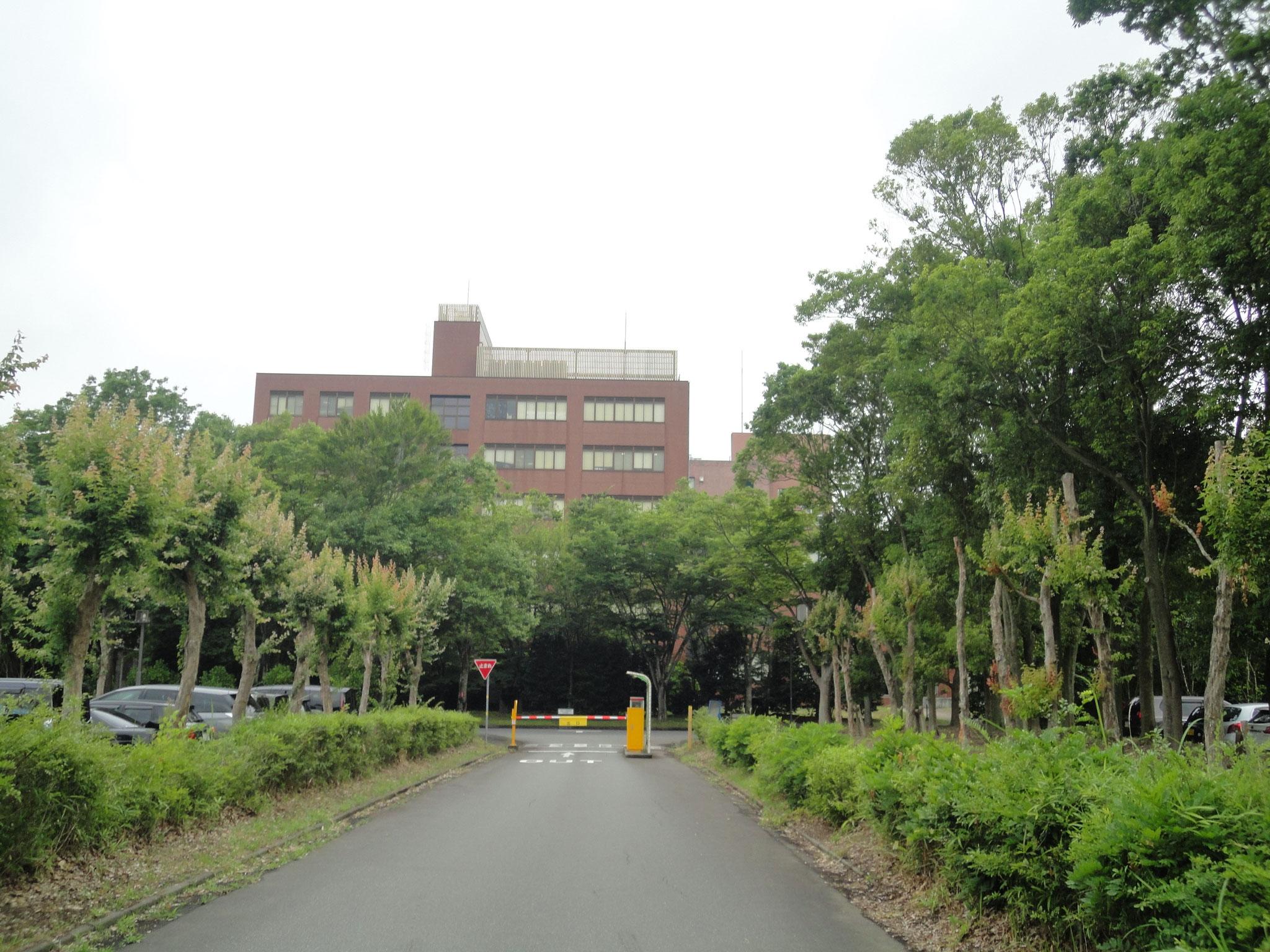 筑波大学 本部等まで自転車で約5分