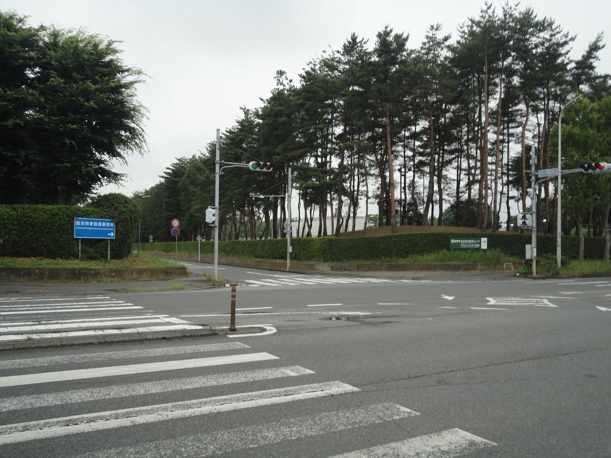 防災科学研究所、NTT研究所近く。