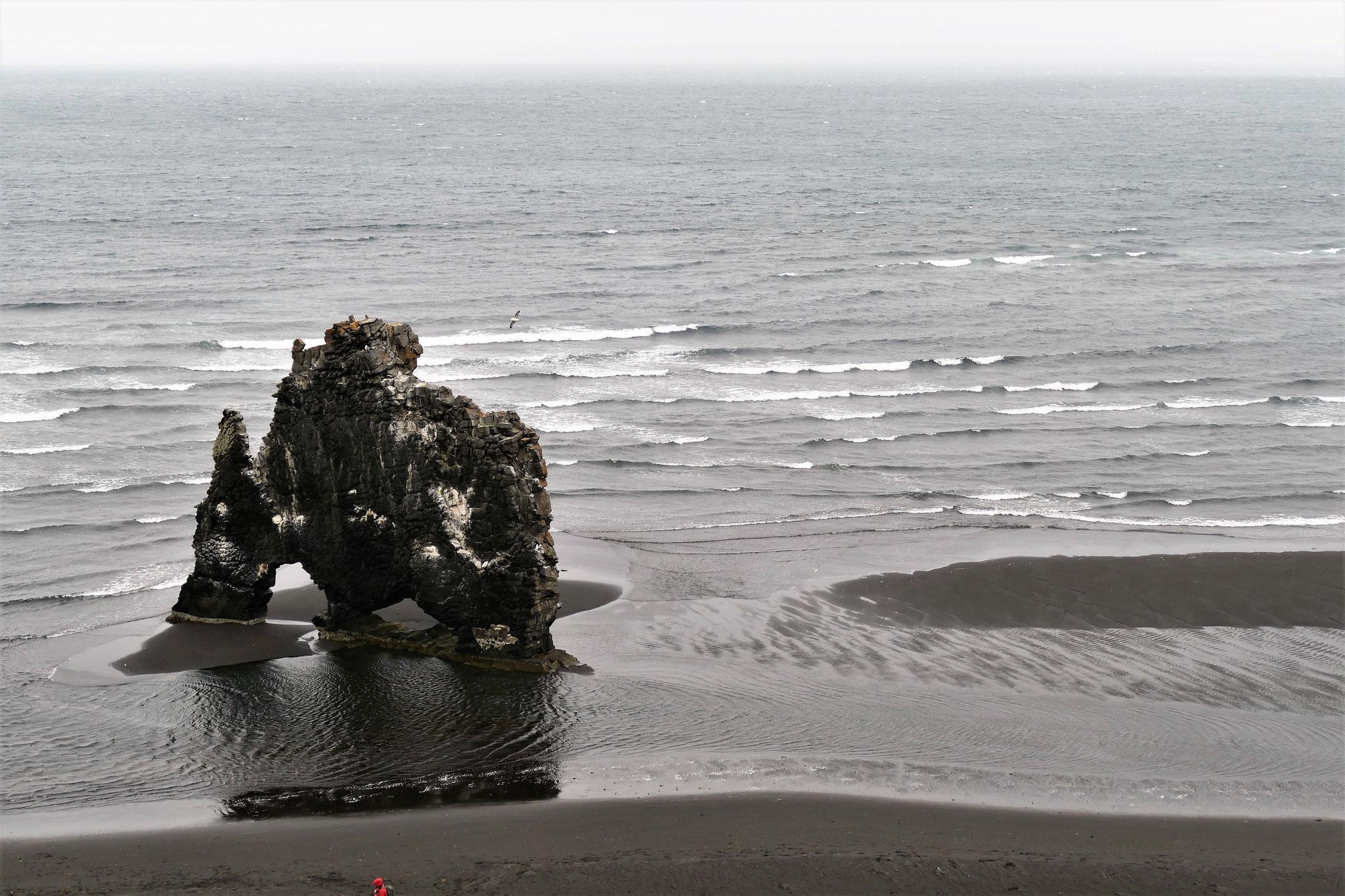 Hvitsekur: der schwarze Felsen im schwarzen Sand auf der Halbinsel Vatnsnesfjall