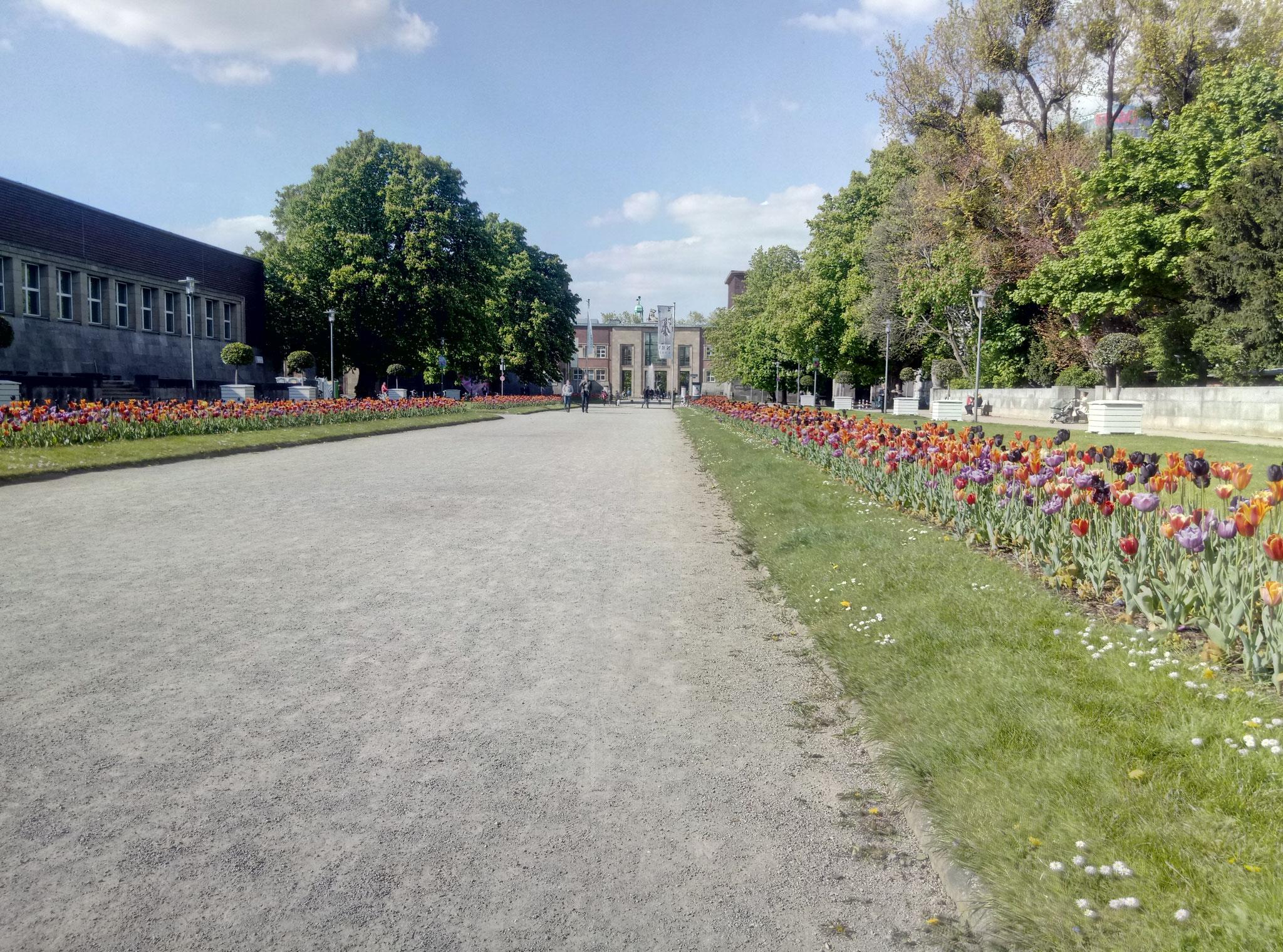 Blick in Richtung Museum Kunstpalst