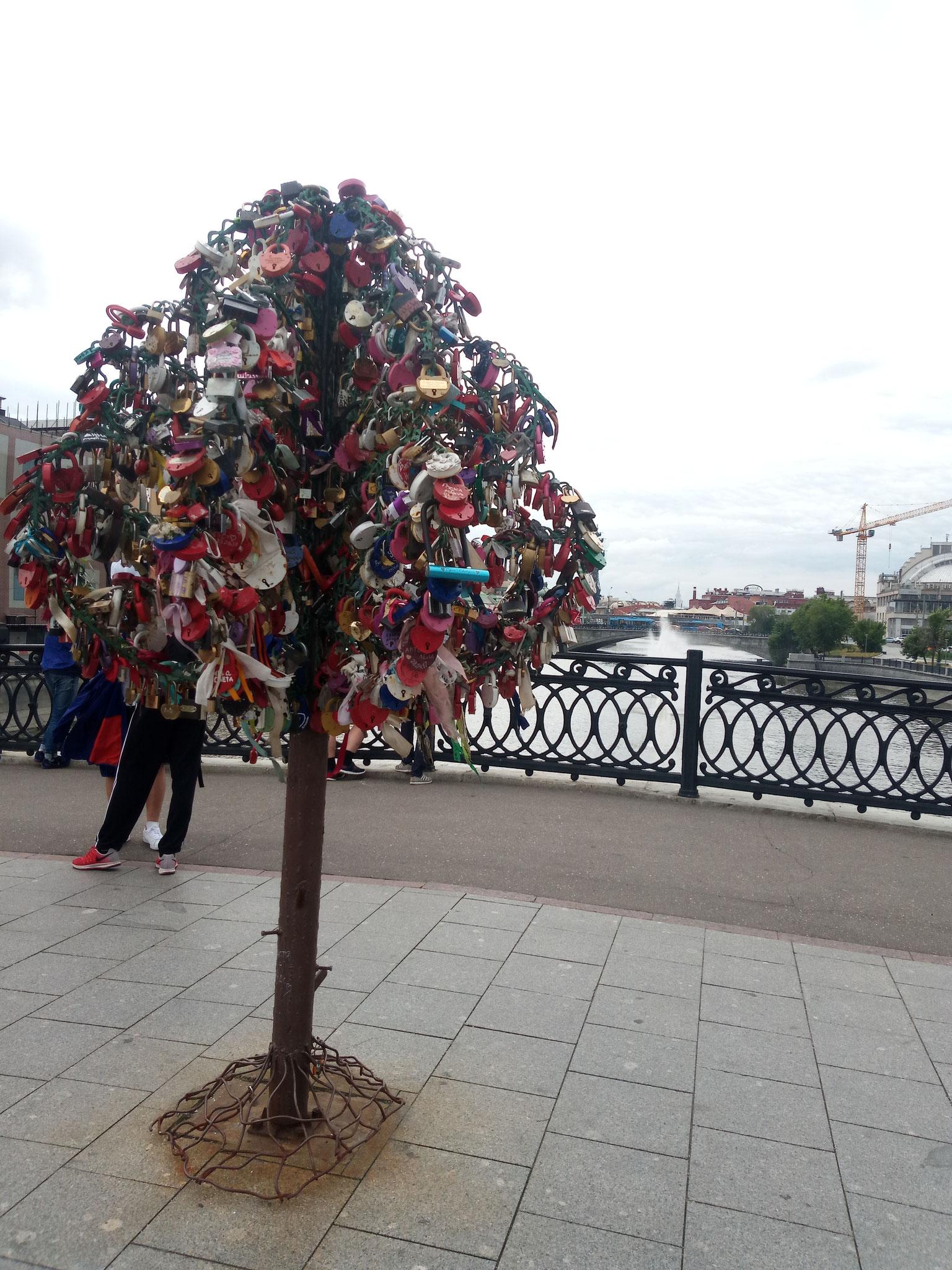 Arbre de l'amour sur le Loujkov Pont