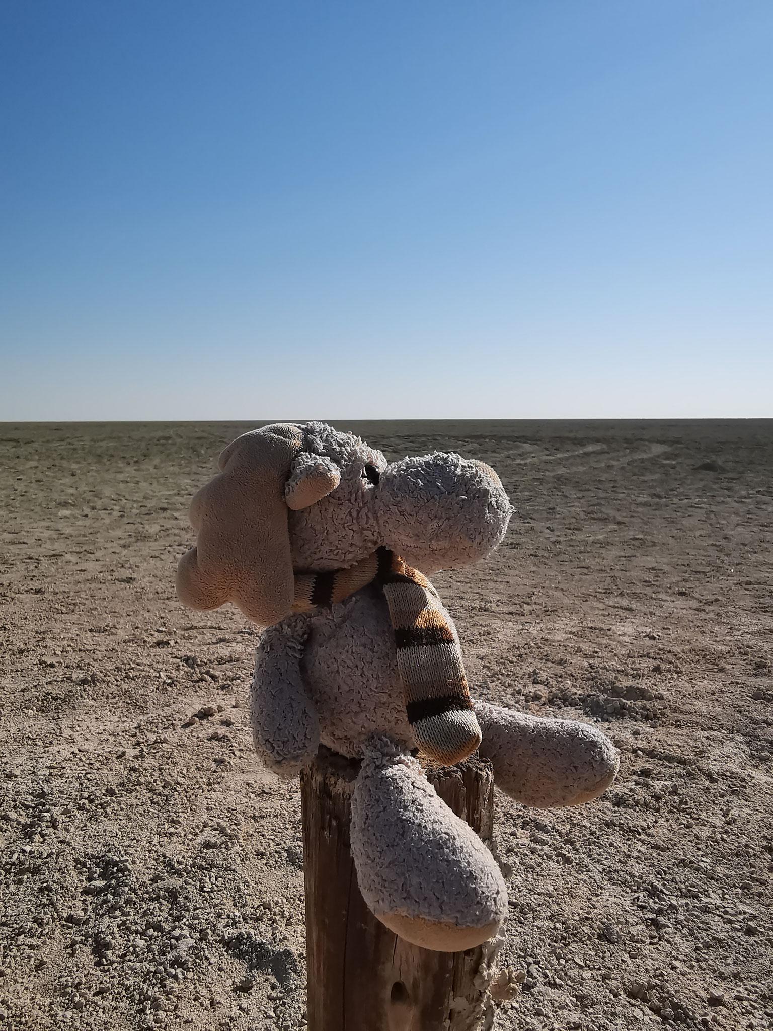Elli im Etosha Nationalpark mit Blick auf die Salzpfanne (Namibia)