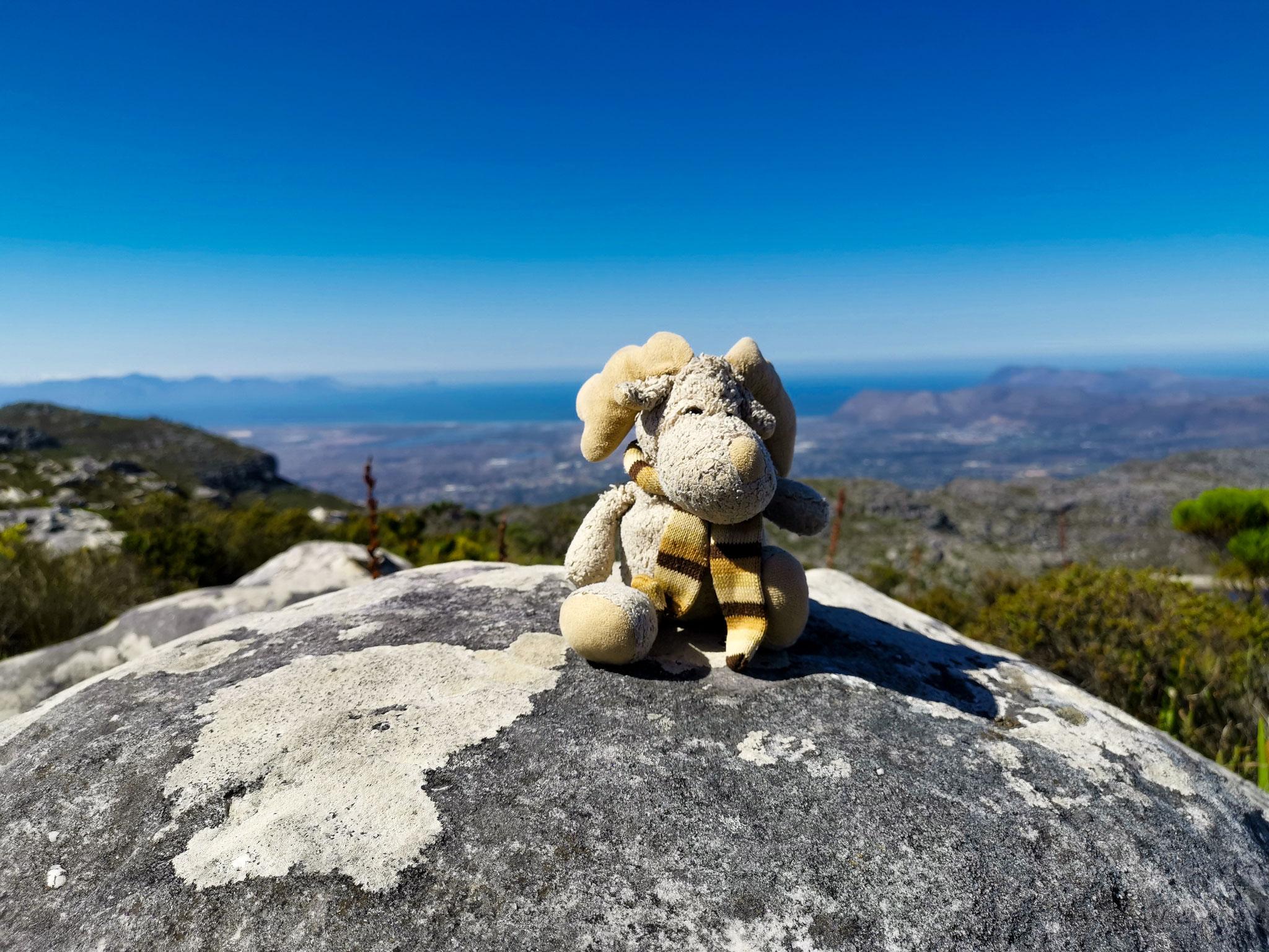 Ich auf dem Tafelberg mit dem Blick zum Kap der guten Hoffnung. (Südafrika)