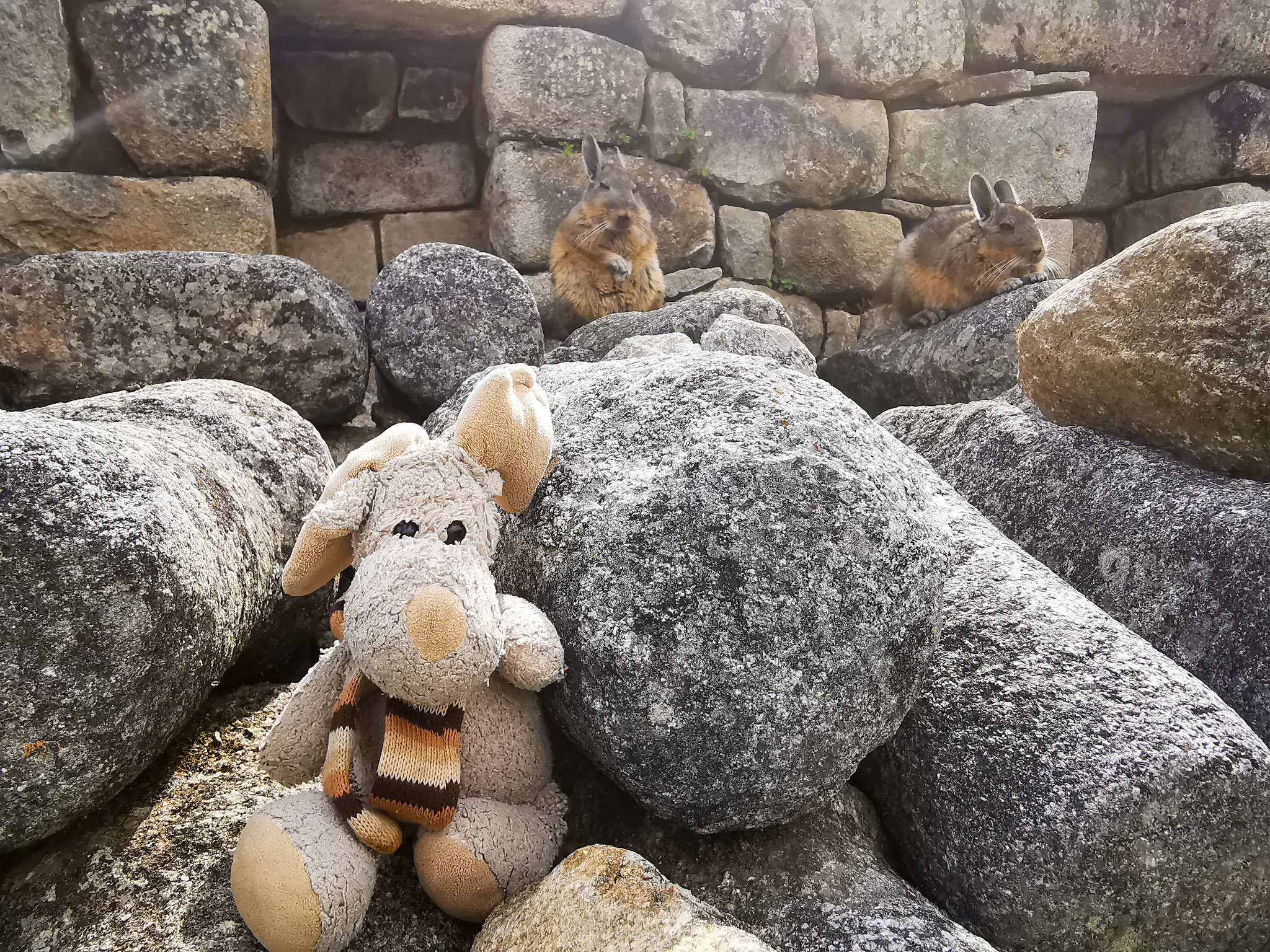 Ich finde überall Freunde, selbst in Machu Picchu (Peru)
