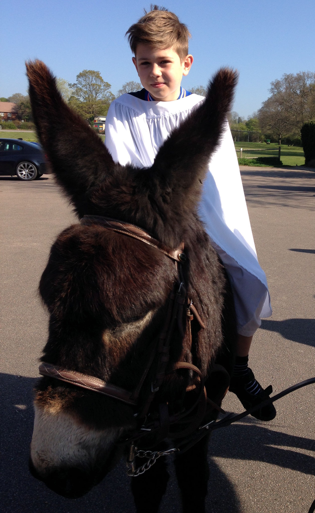 'Jesus' on the donkey