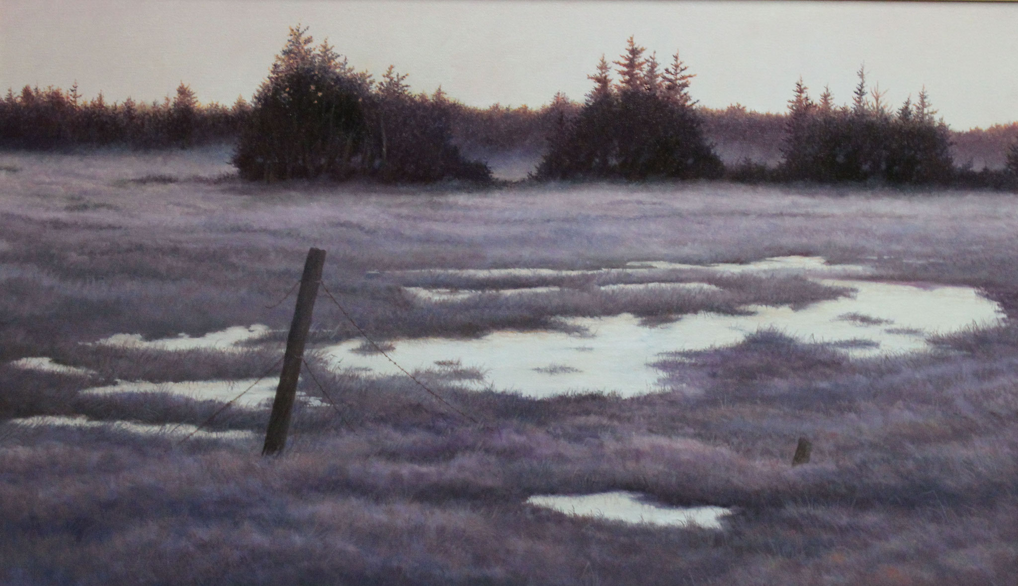 Frost, Ivan Wheale oil on canvas 18 X 30