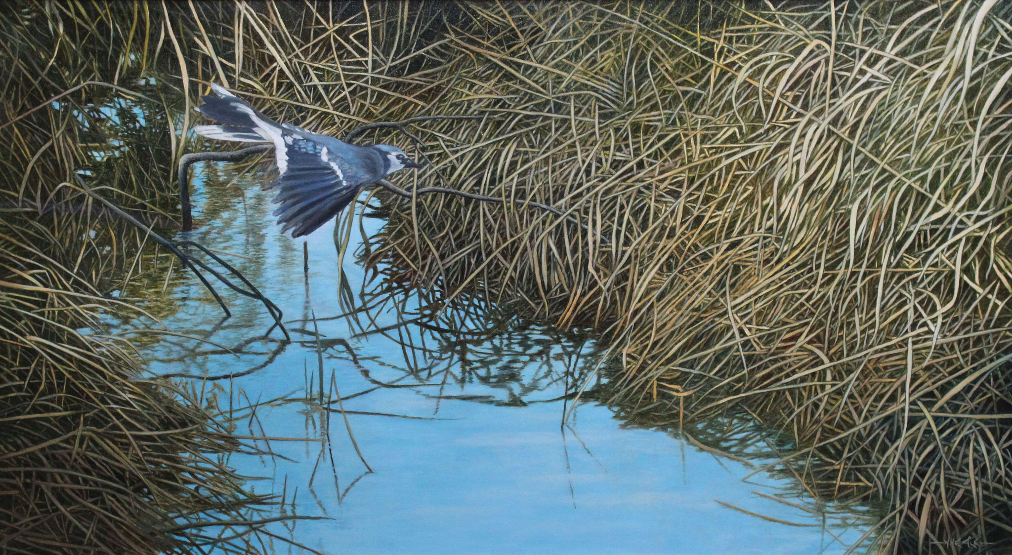 The Creek ,  Ivan Wheale 20 X36 Oil on canvas
