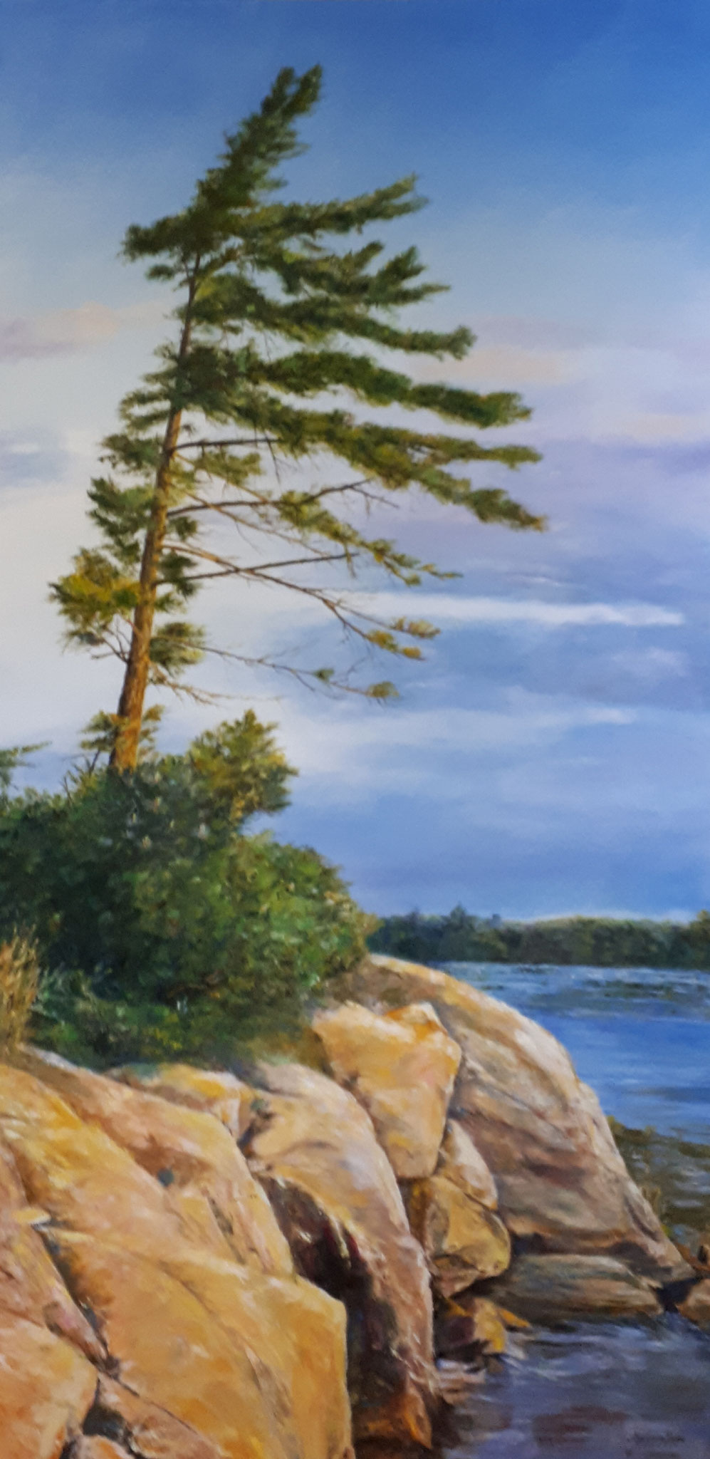 WINDSWEPT 48 X 24 oil by Marianne Braid  SOLD