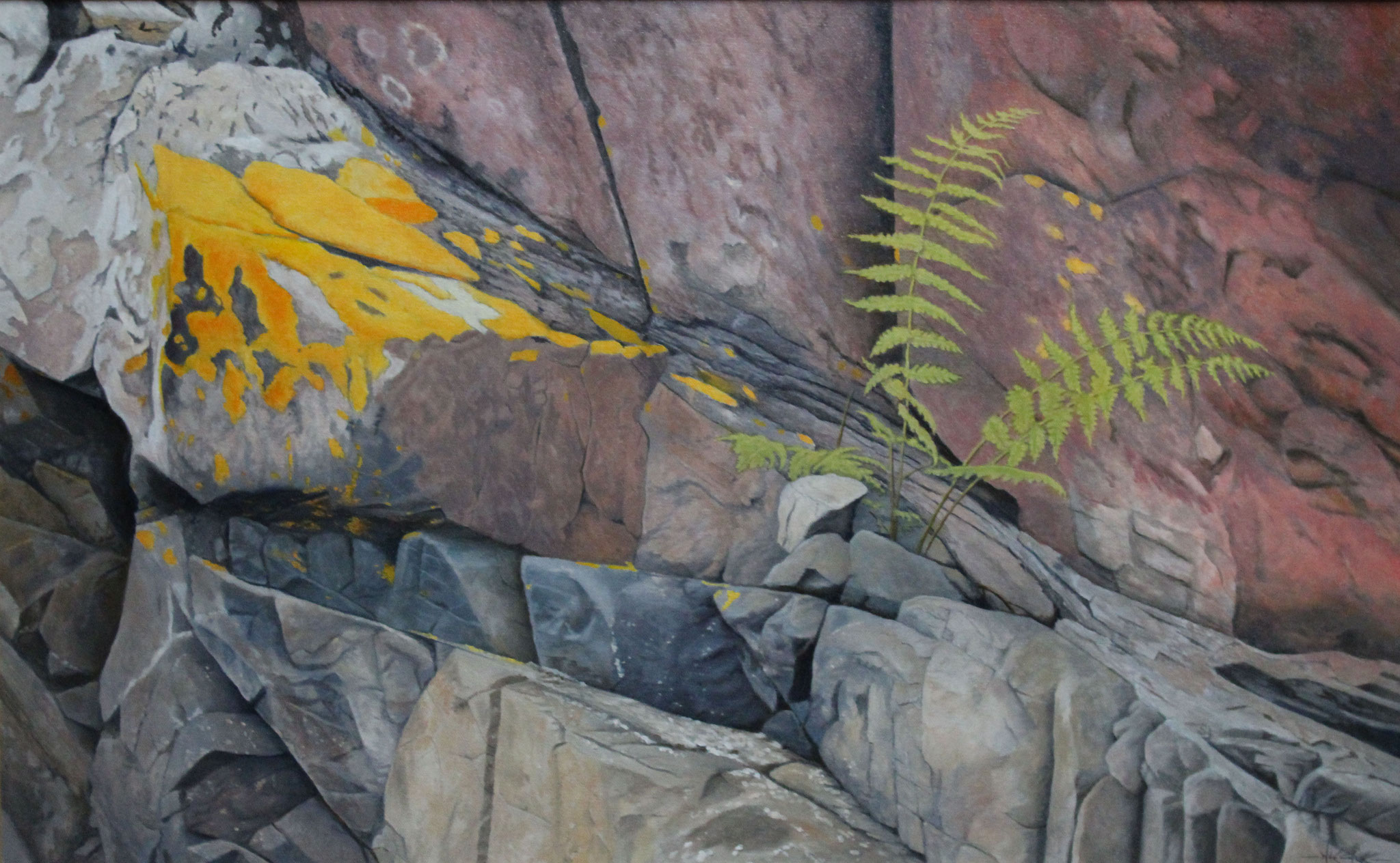 The Granite Fern, Ivan Wheale 20X32 oil on canvas