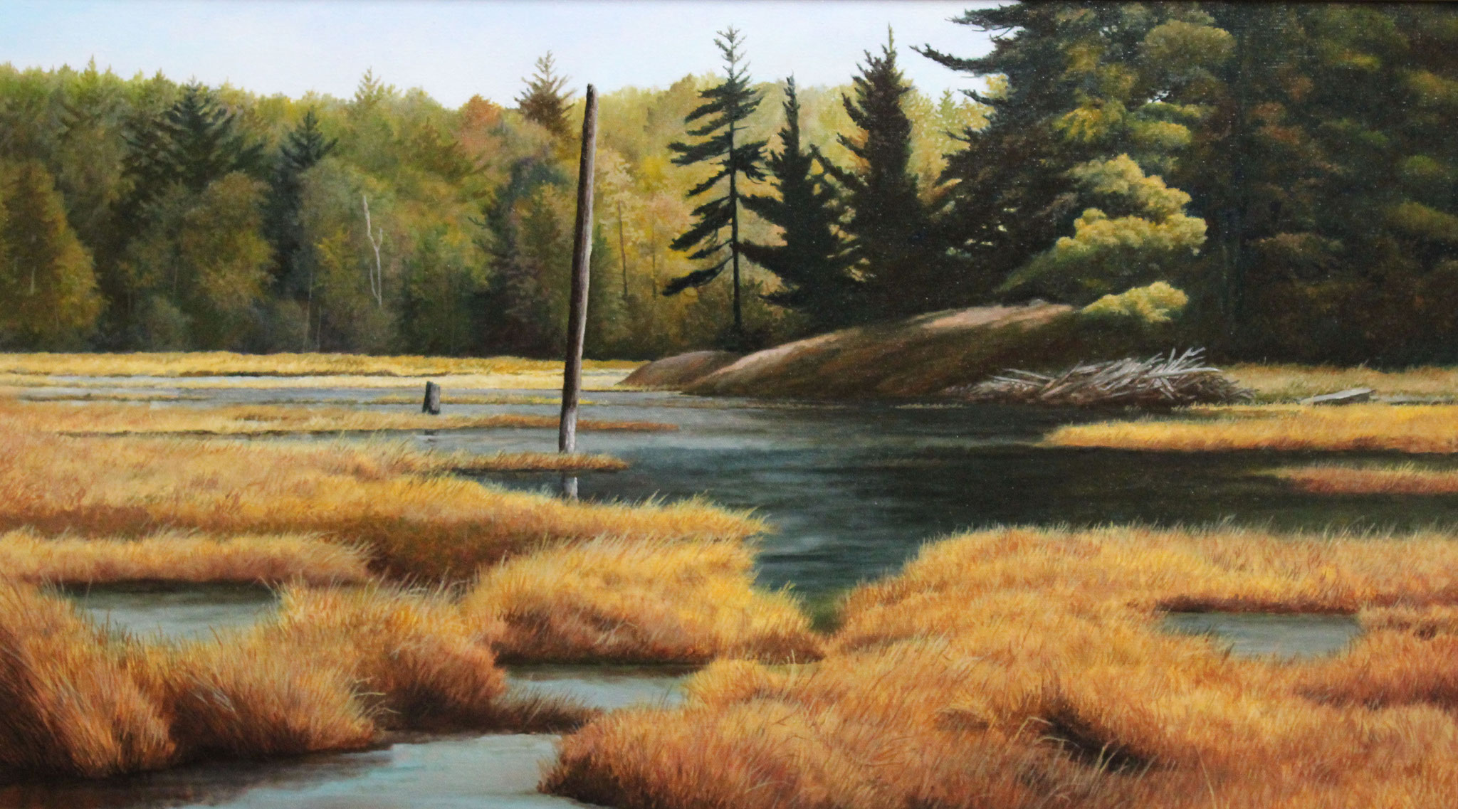 Old Beaver Swamp, Ivan Wheale 17X30 oil on canvas