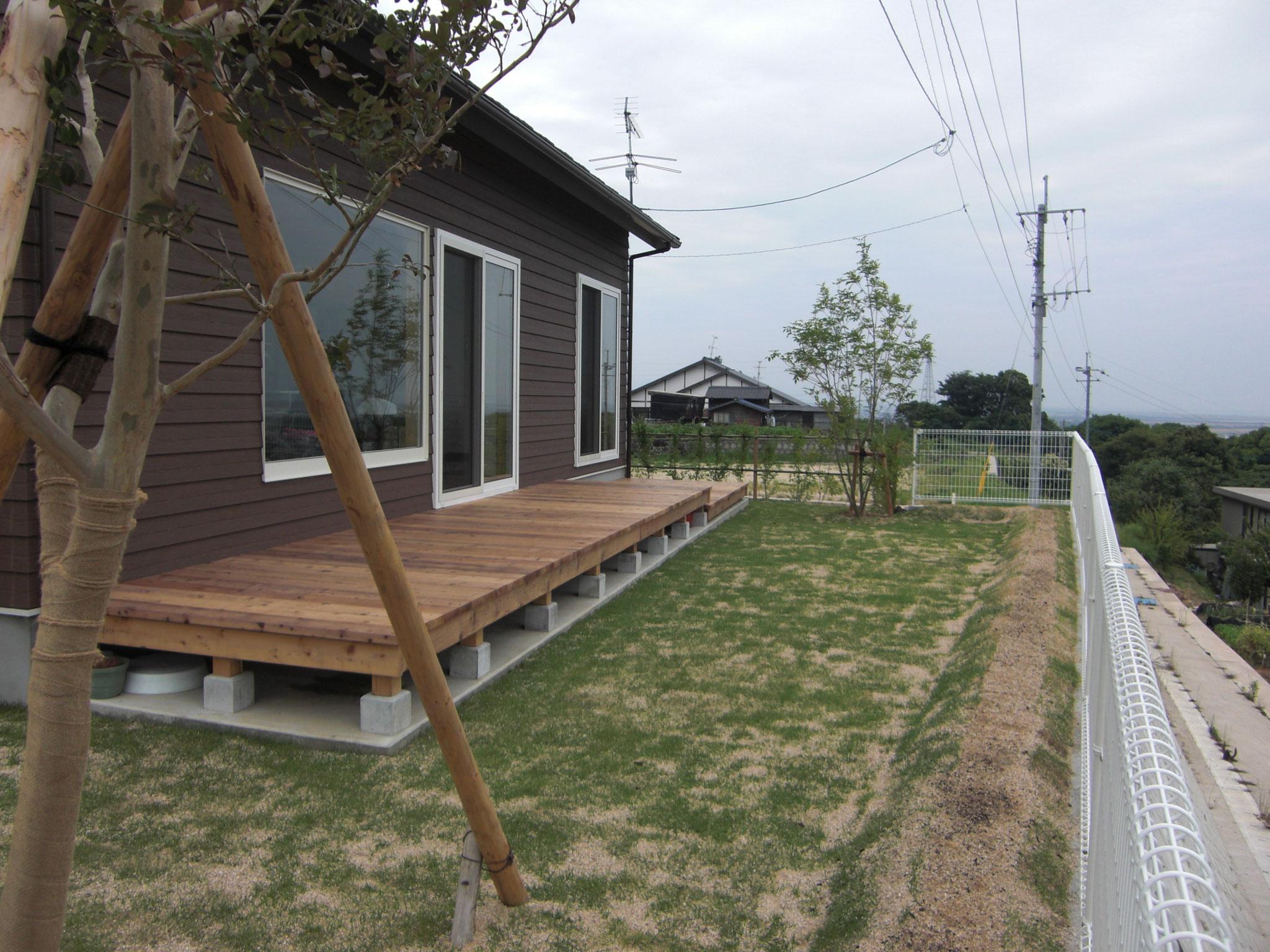 庭一面の天然芝