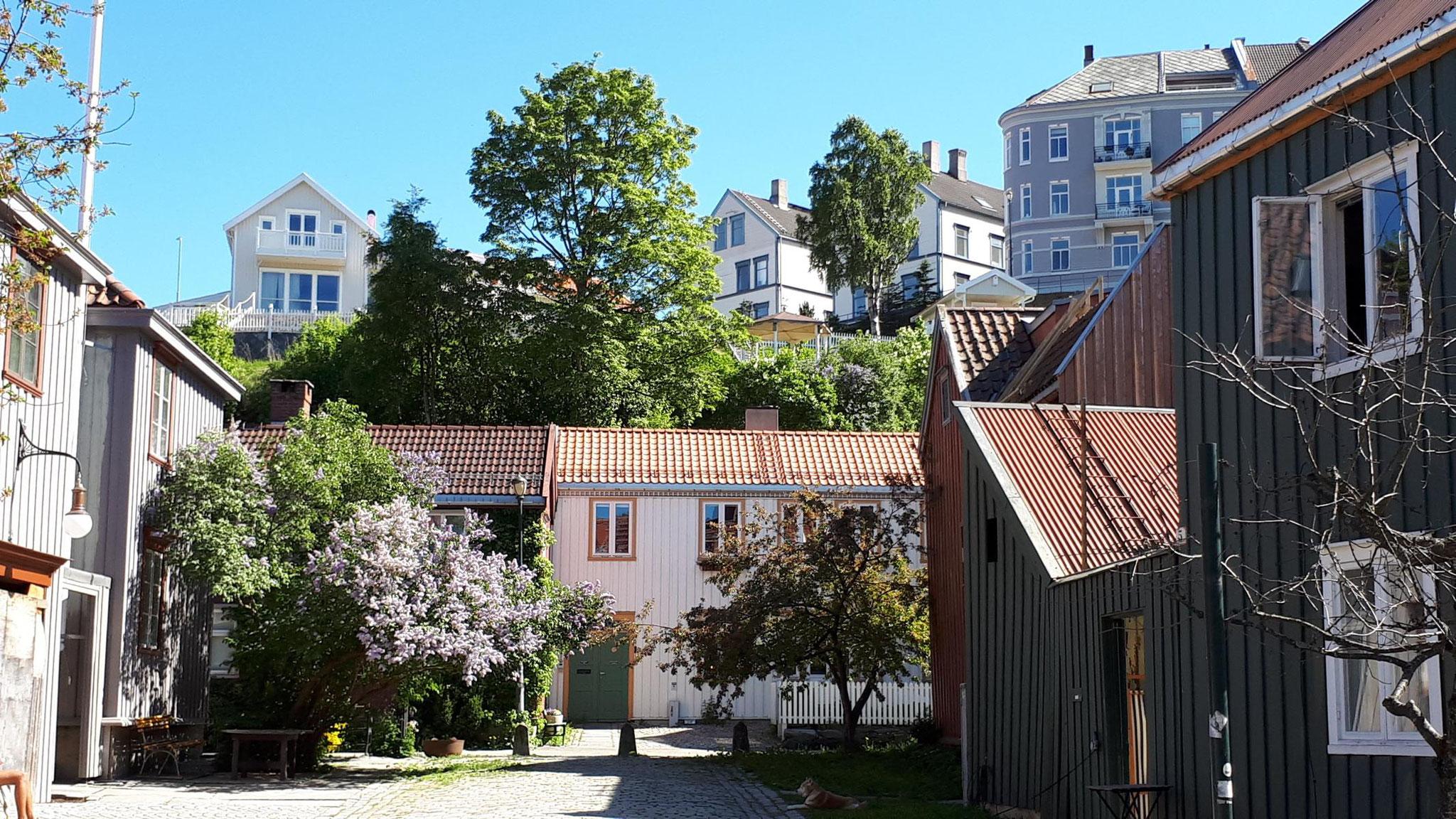 Altstadt Bakklandet