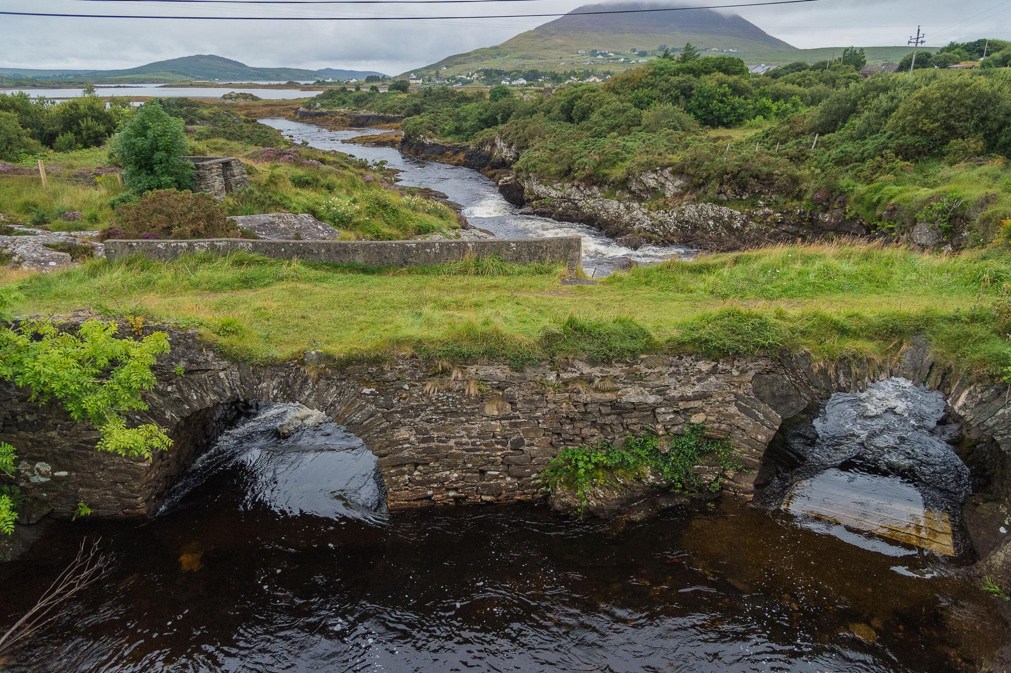 _D4S6749_parc du Connemara Killmore-Irlande
