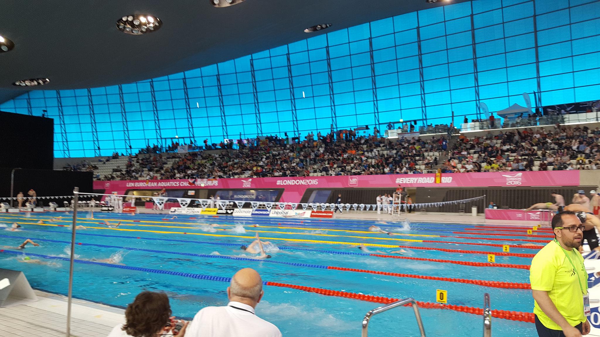 Schwimm-EM 2016