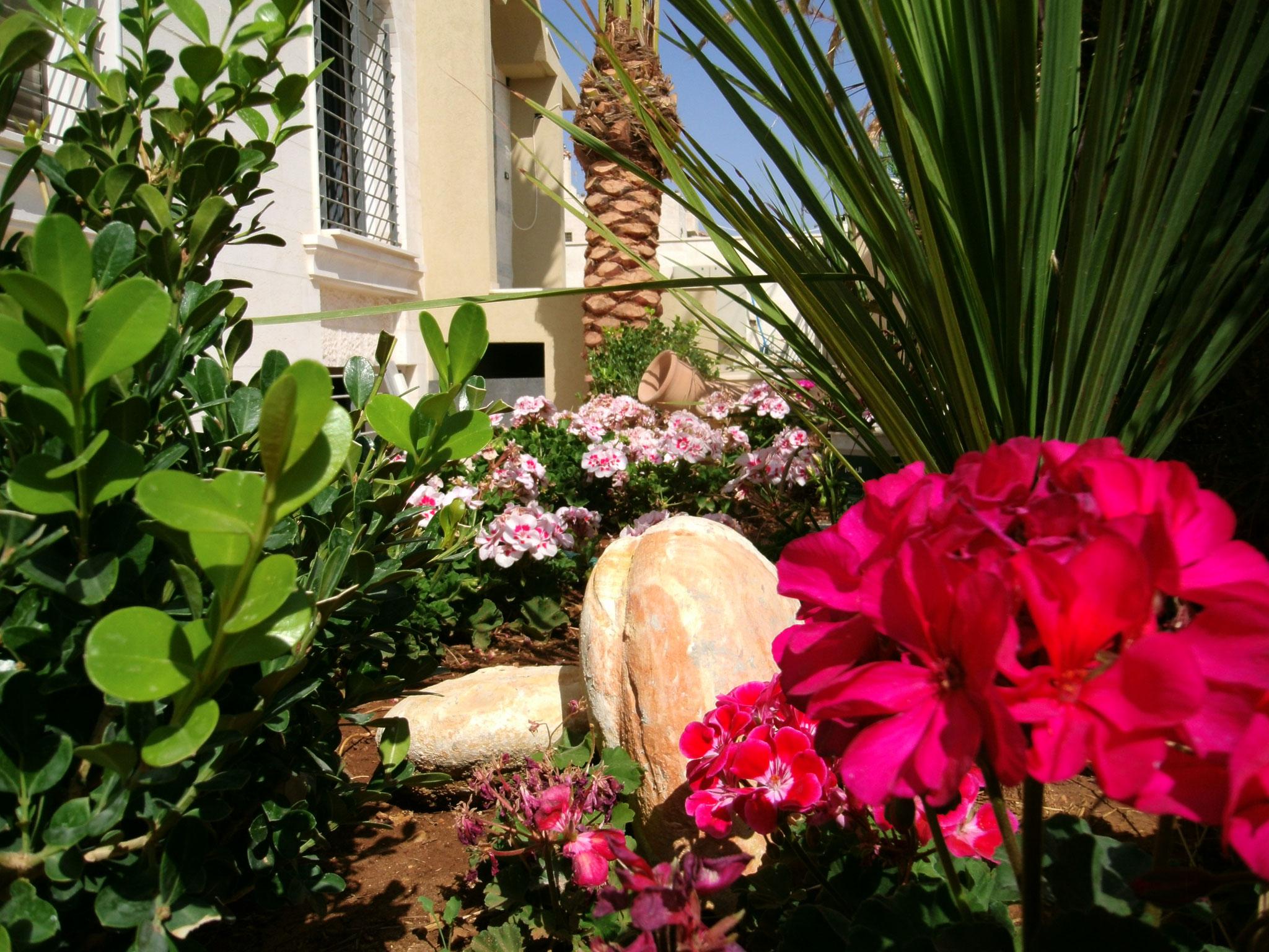 Dr M. Zohir Garden's Home