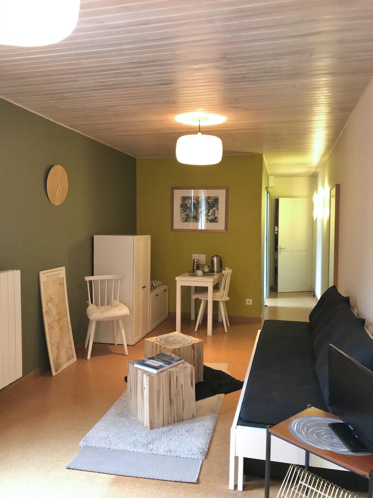 """Gîte """"Les Cépages"""", vue intérieure de la Chambre """"Chardonnay"""" : espace de vie (télévision, canapé convertible, table, minibar), entrée"""