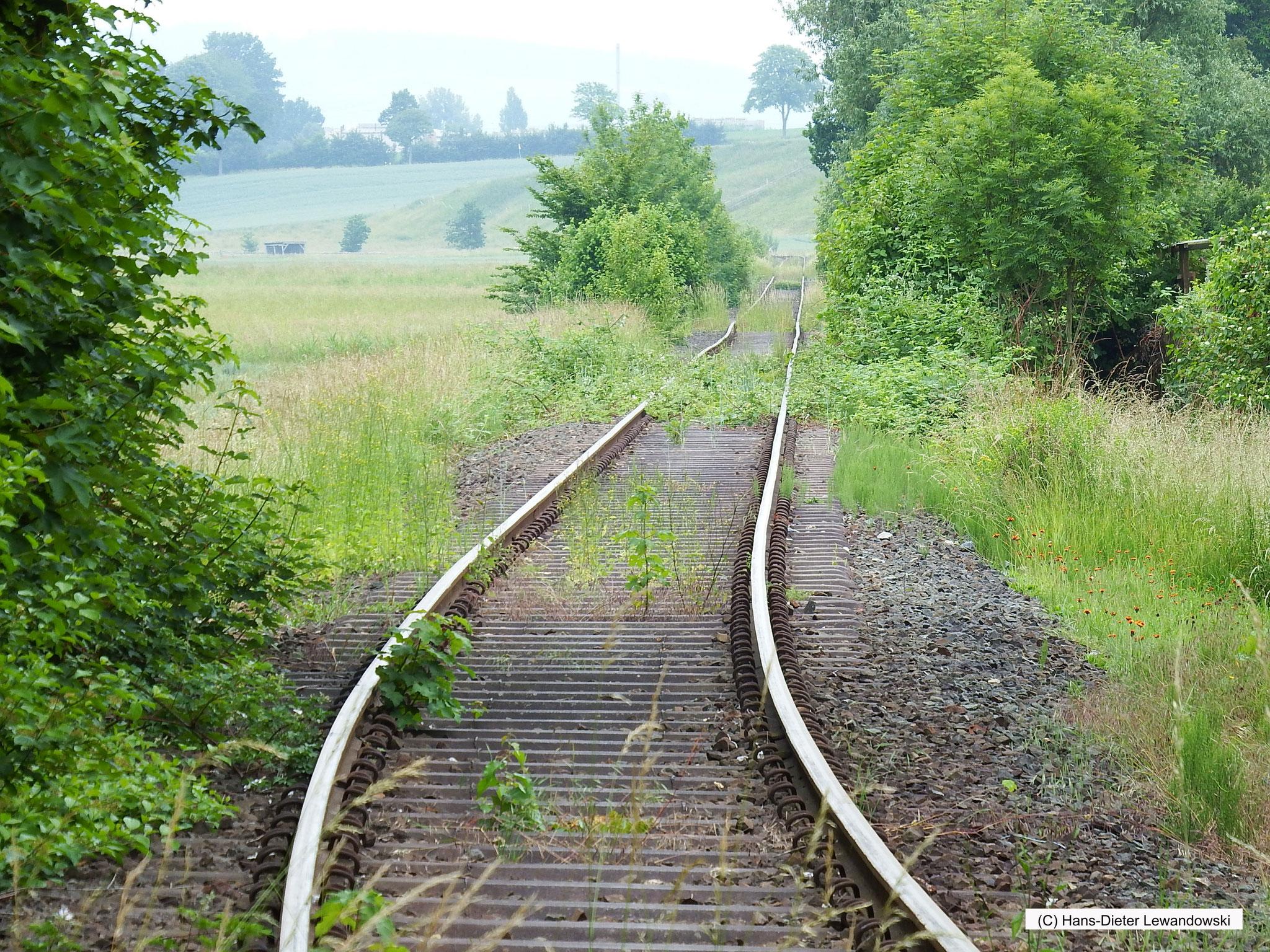 Entlang der Ambergaubahn
