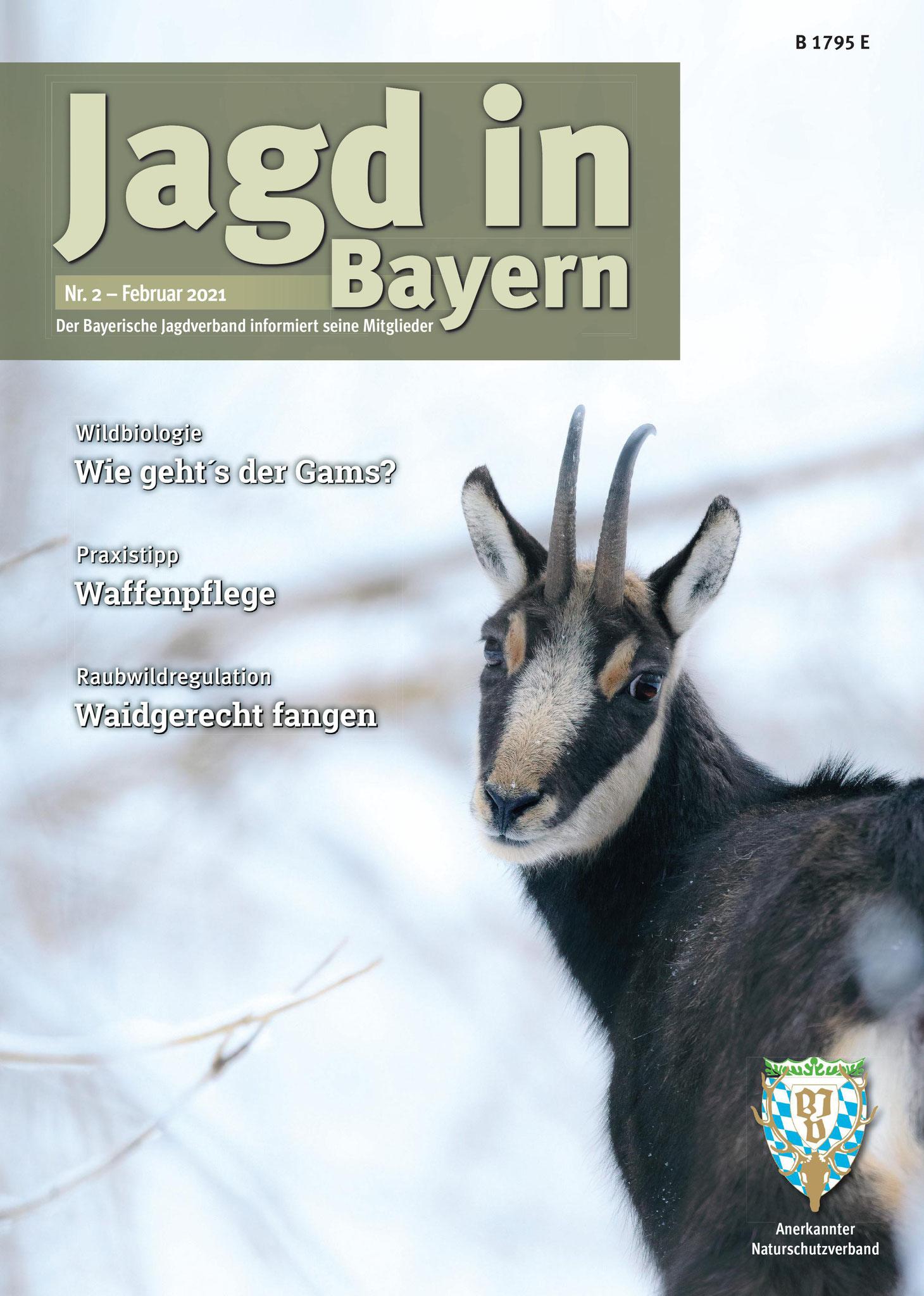 Titelseite der Jagd in Bayern Nr. 2 - Februar 2021