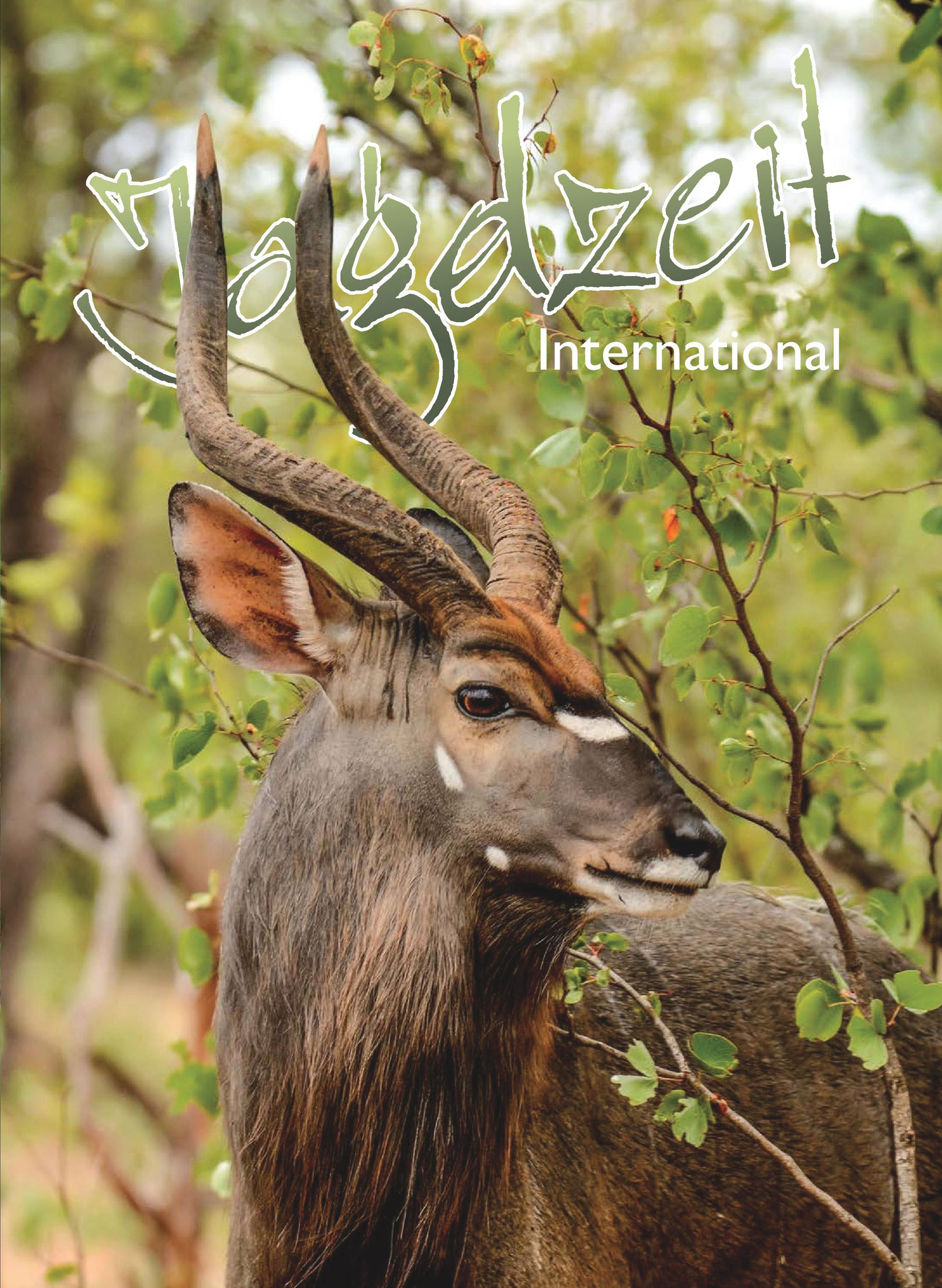 Titelseite der Jagdzeit International Nr. 28 (03/2016)