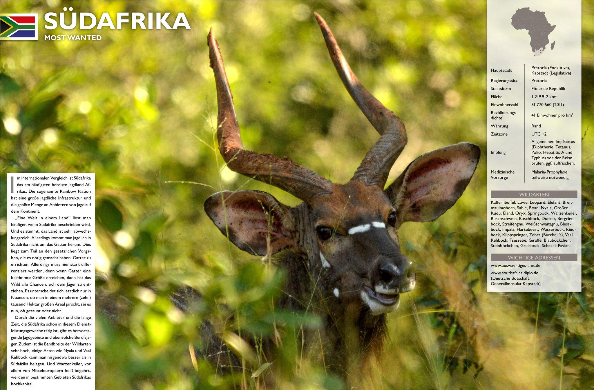 diverse Bilder (inkl. Leitbild Länderportrait Südafrika) in Jagdzeit International - Themenband Afrika