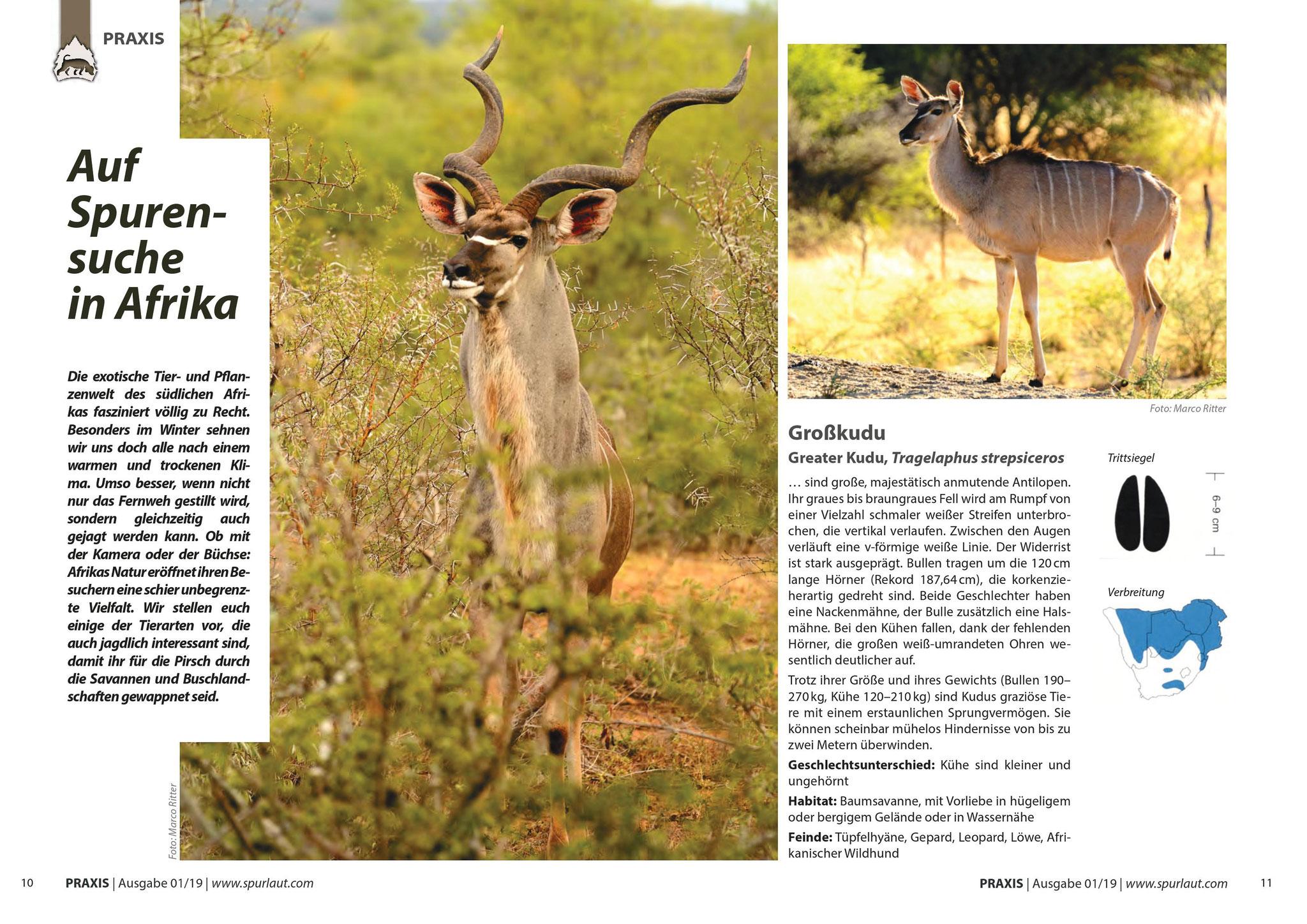 """teilweise Bebilderung inkl. Leitbild des Artikels """"Auf Spurensuche in Afrika"""" in Spurlaut Ausgabe 01/2019"""