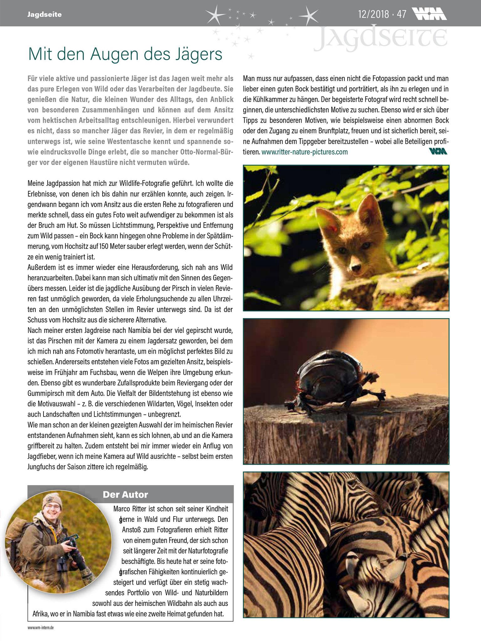 """Bebilderung des Artikels """"Mit den Augen des Jägers"""" in WM-Intern 12/2018"""