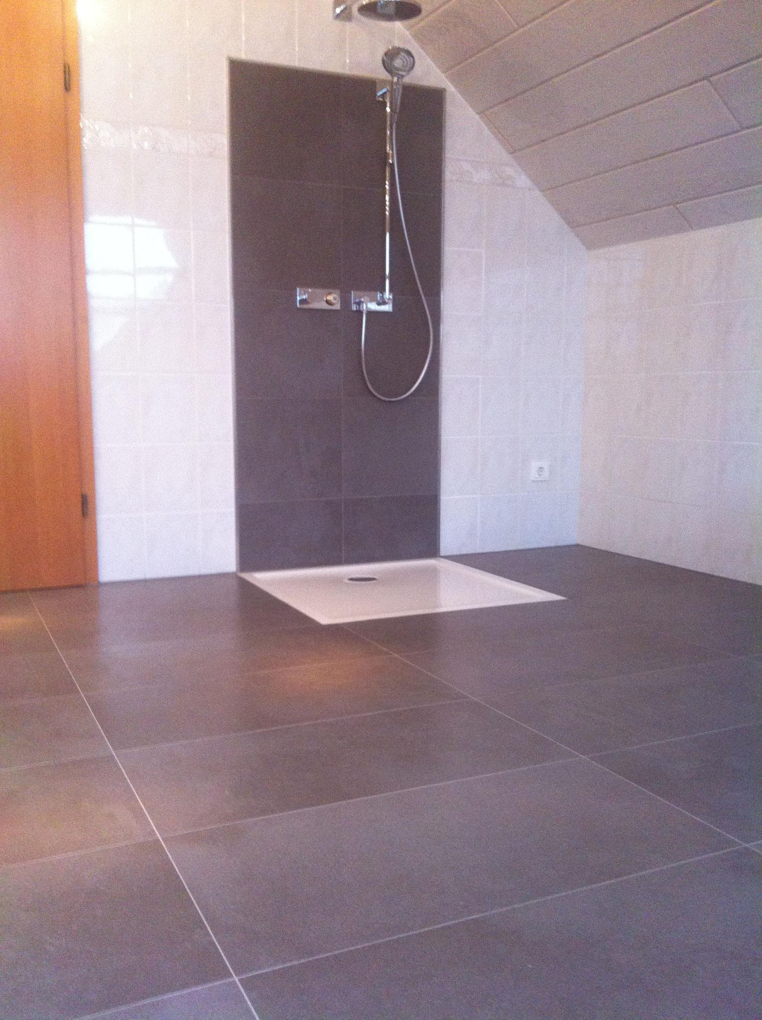 Renovierung Boden und Duschrückwand