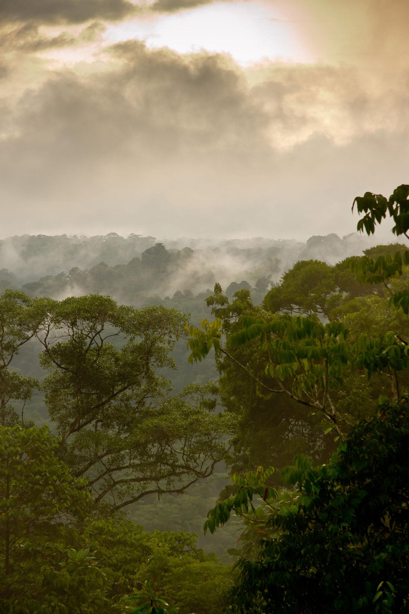 Paysage de la péninsule d'Osa Costa Rica @Pascal Jahan