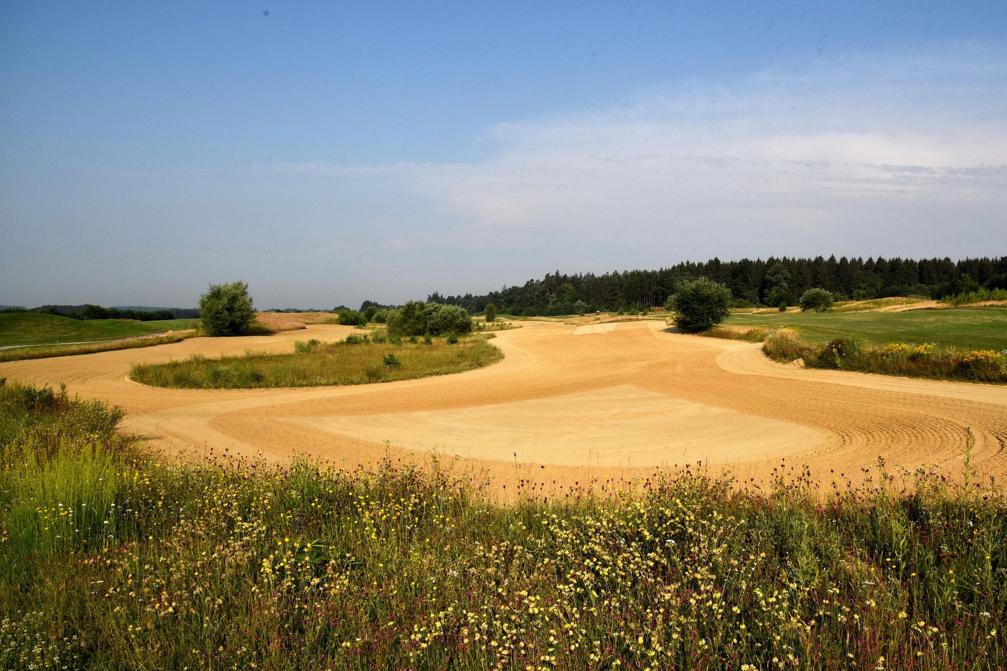 Desert Golf Eschenried München