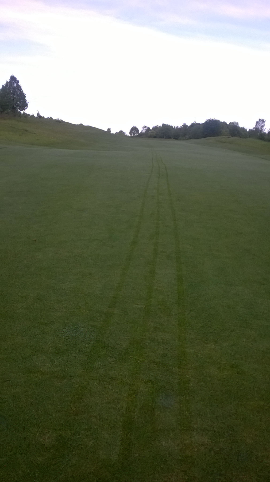 gerade Spuren vom Golfcart sind nicht immer die Regel