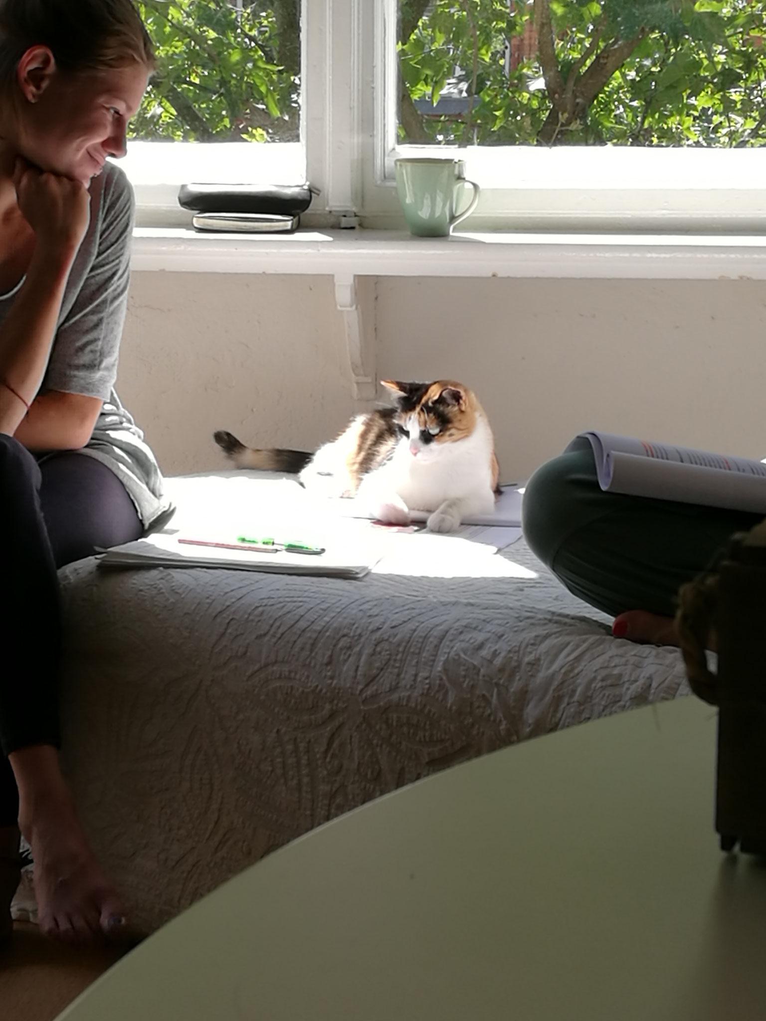 Lilou wartet auch schon gespannt, bis es losgeht