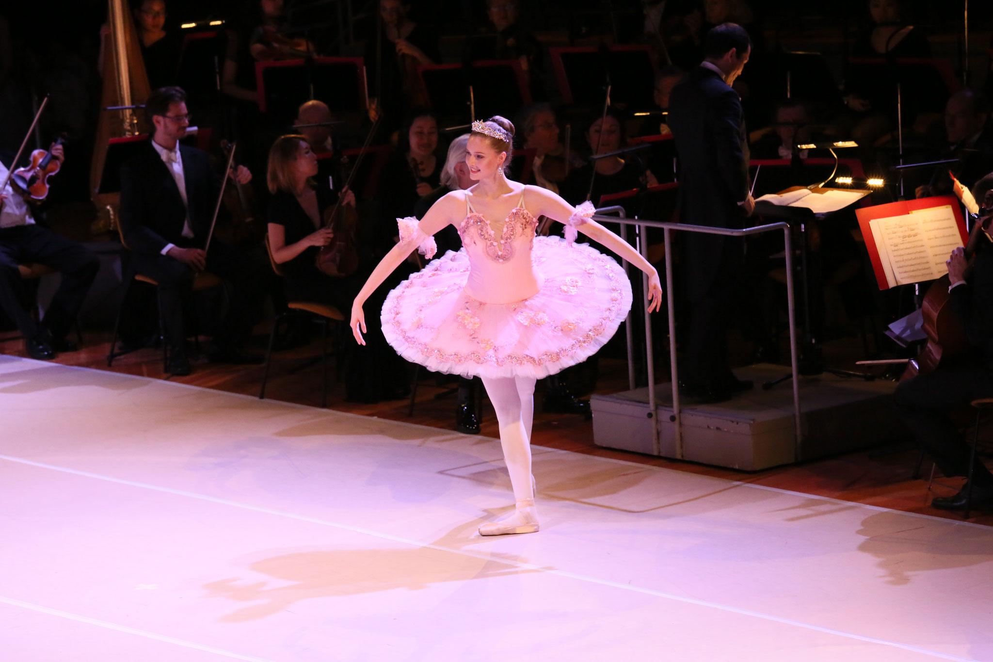 Ballett Weihnachten 2019.Ballett Und Tanzstudio Zehlendorf Ballett Zehlendorfs Webseite