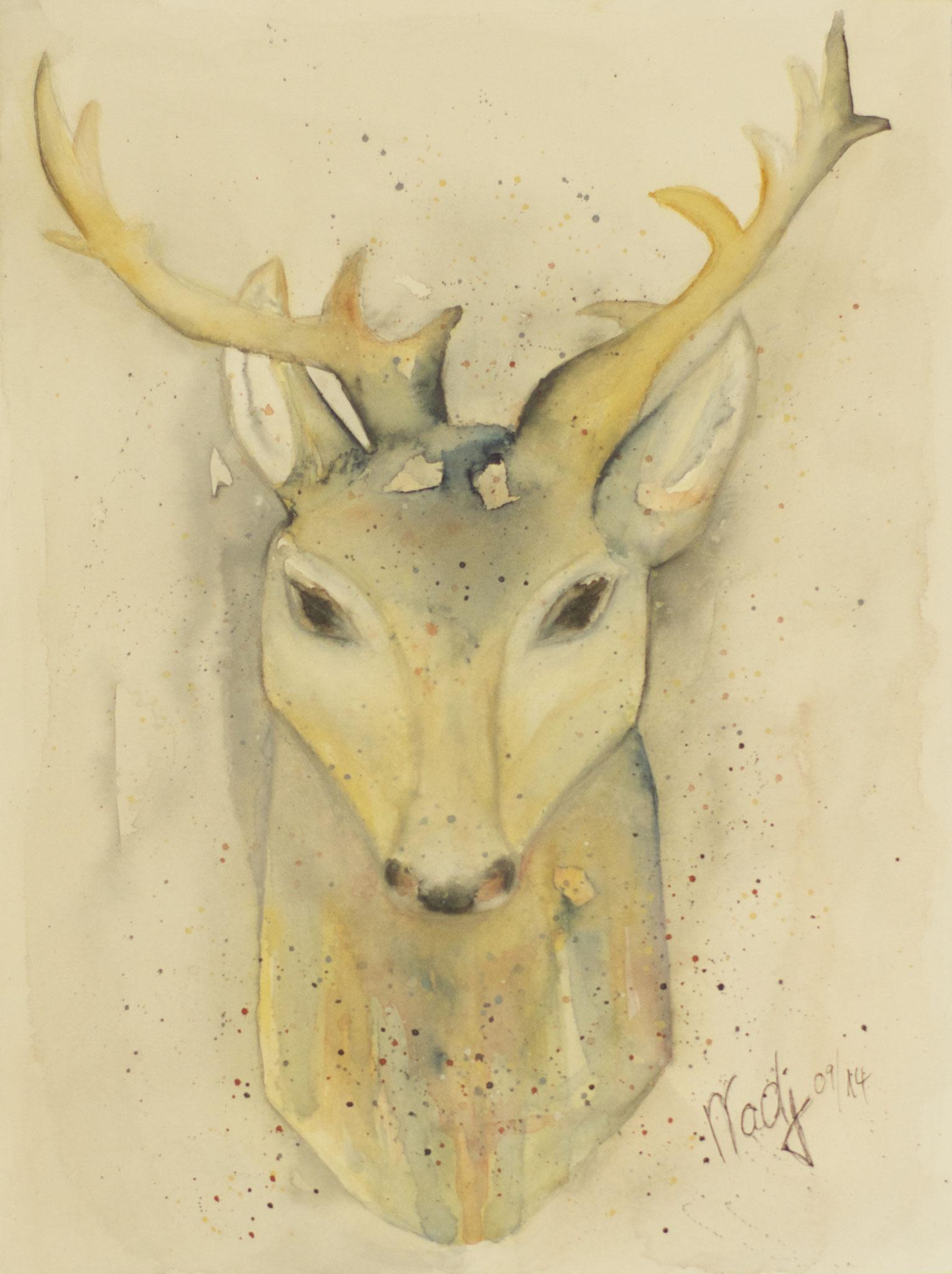 Hirsch Aquarell 23X30.5cm Bild Nr.55 Verkauft