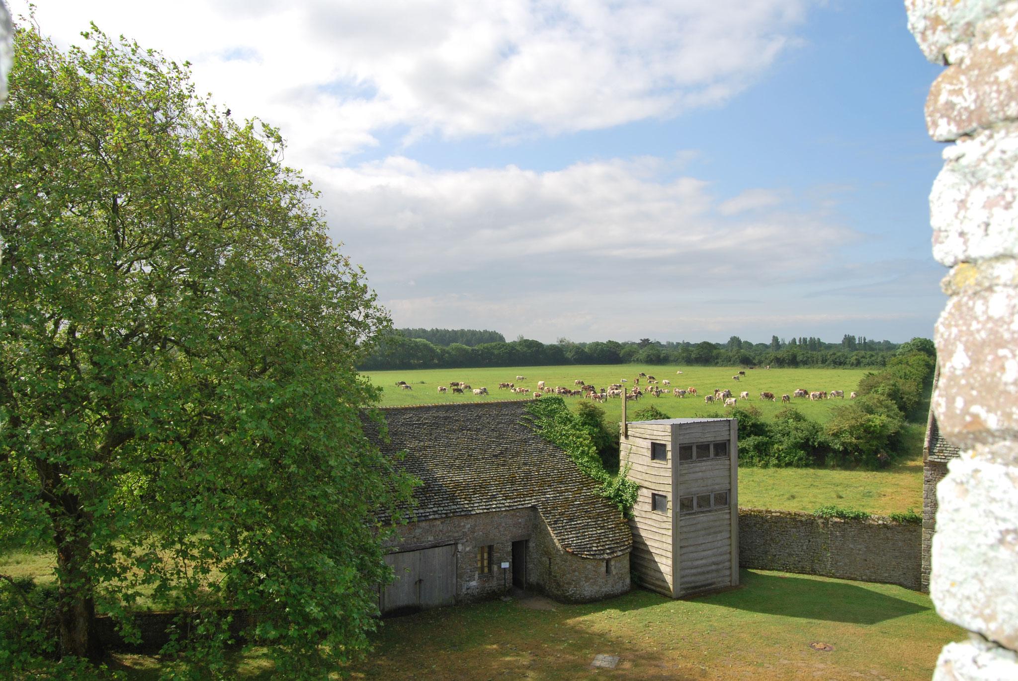 Château de Pirou