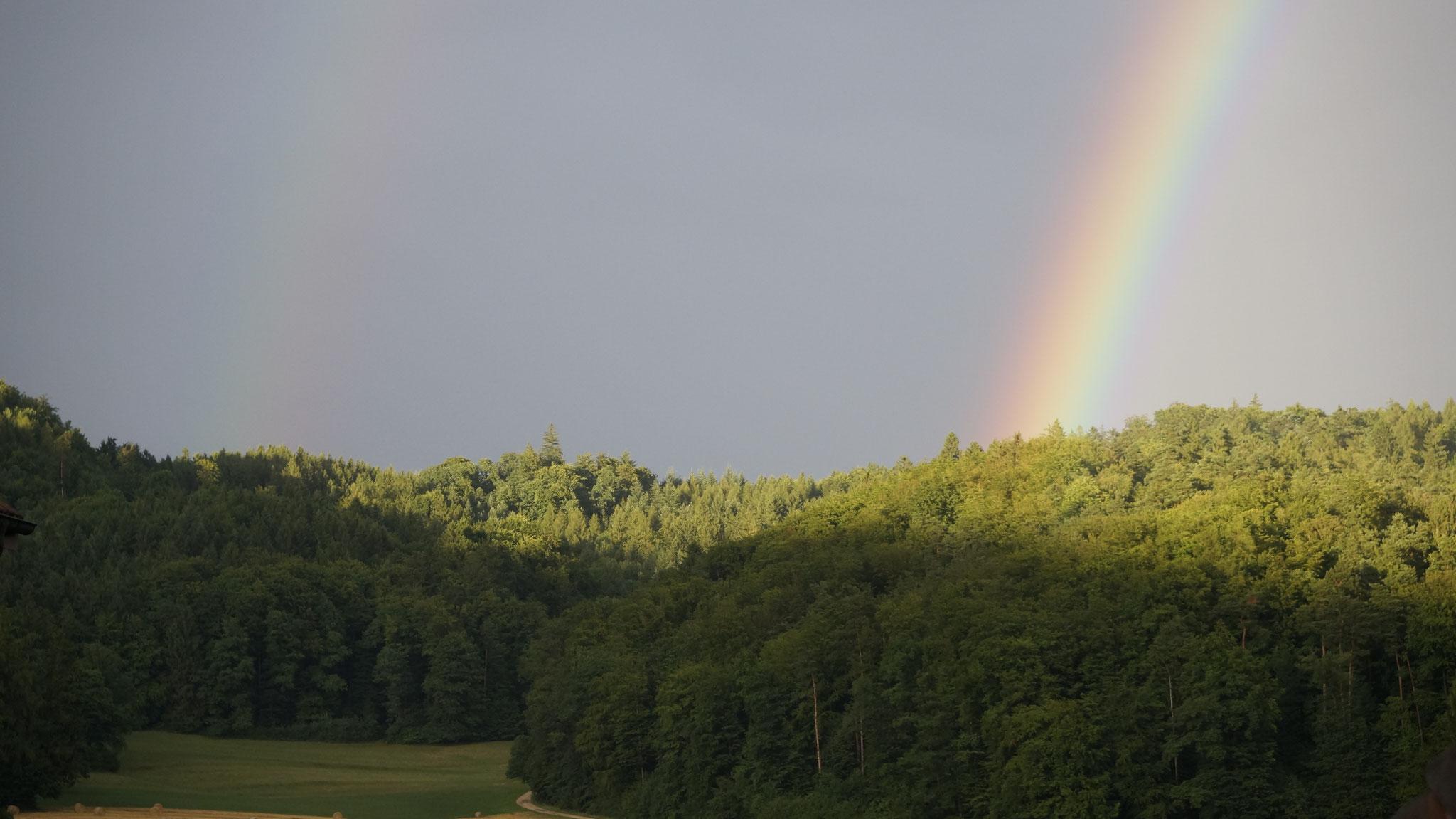 9.7.2017::Richtung Grimmrüti NO