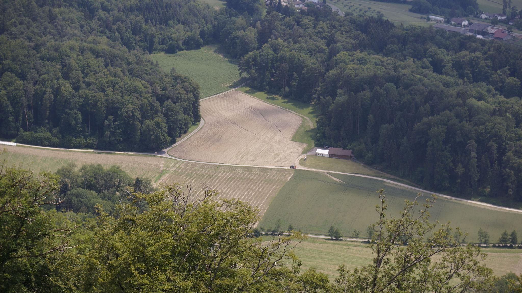 Wasserbahnen im Acker und im Getreidefeld