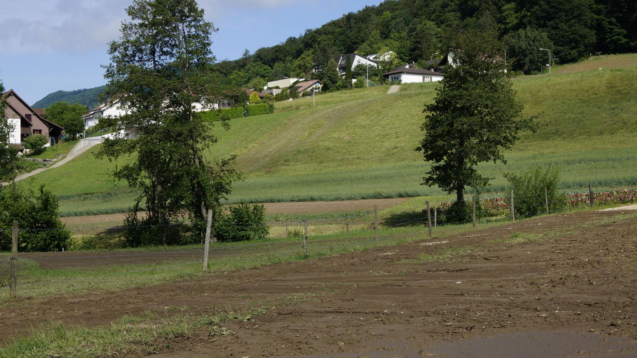 31.5.2018::Wasserbahn aus Richtung Berg