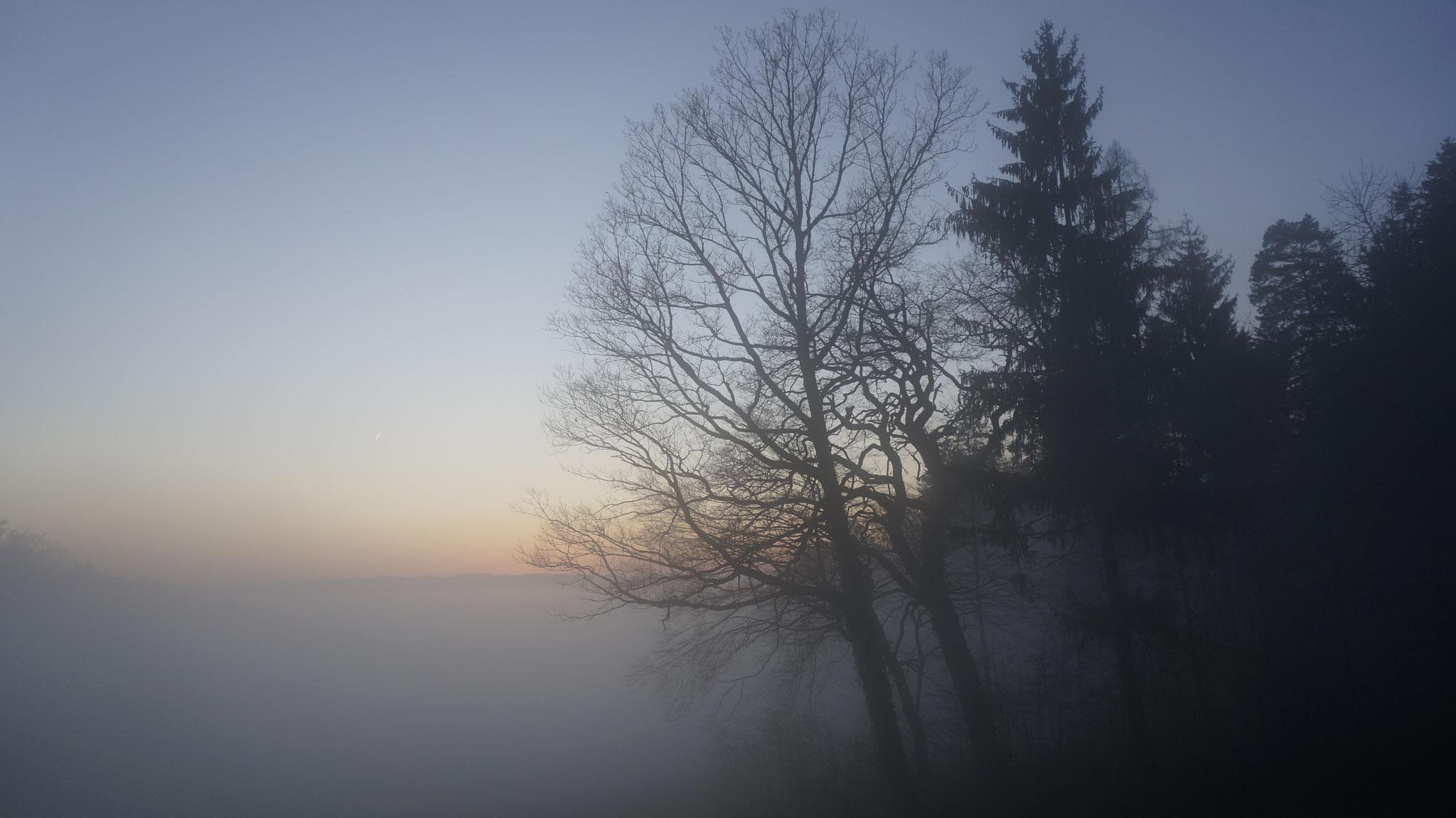 14.12.2015::Grimmrüti
