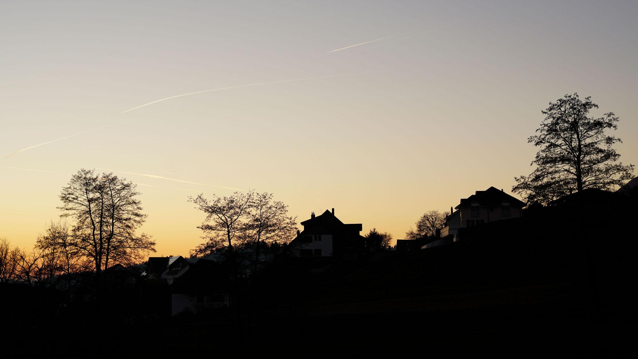 06.01.2020::Rohracher im Abendlicht