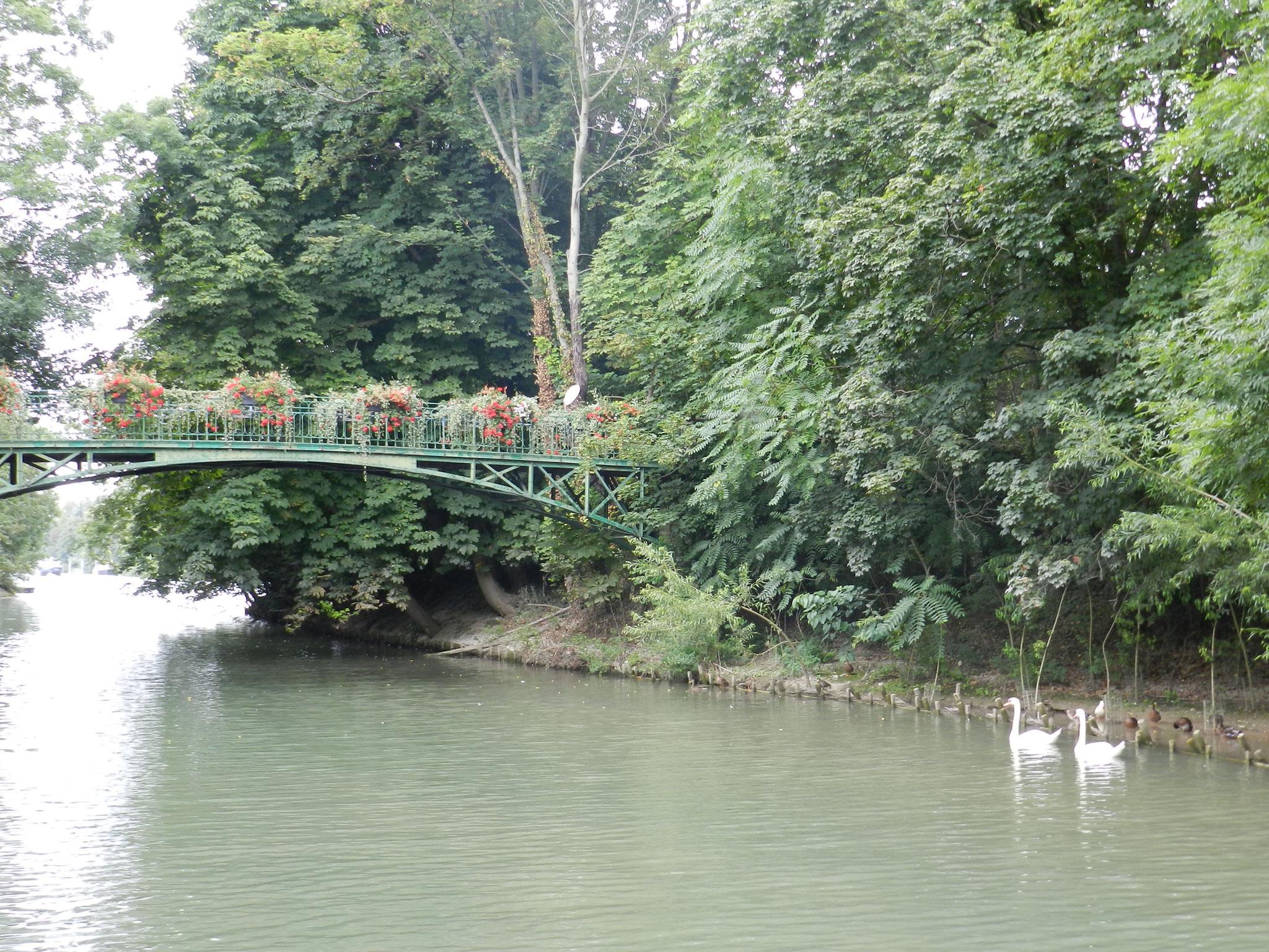 Marne river sides