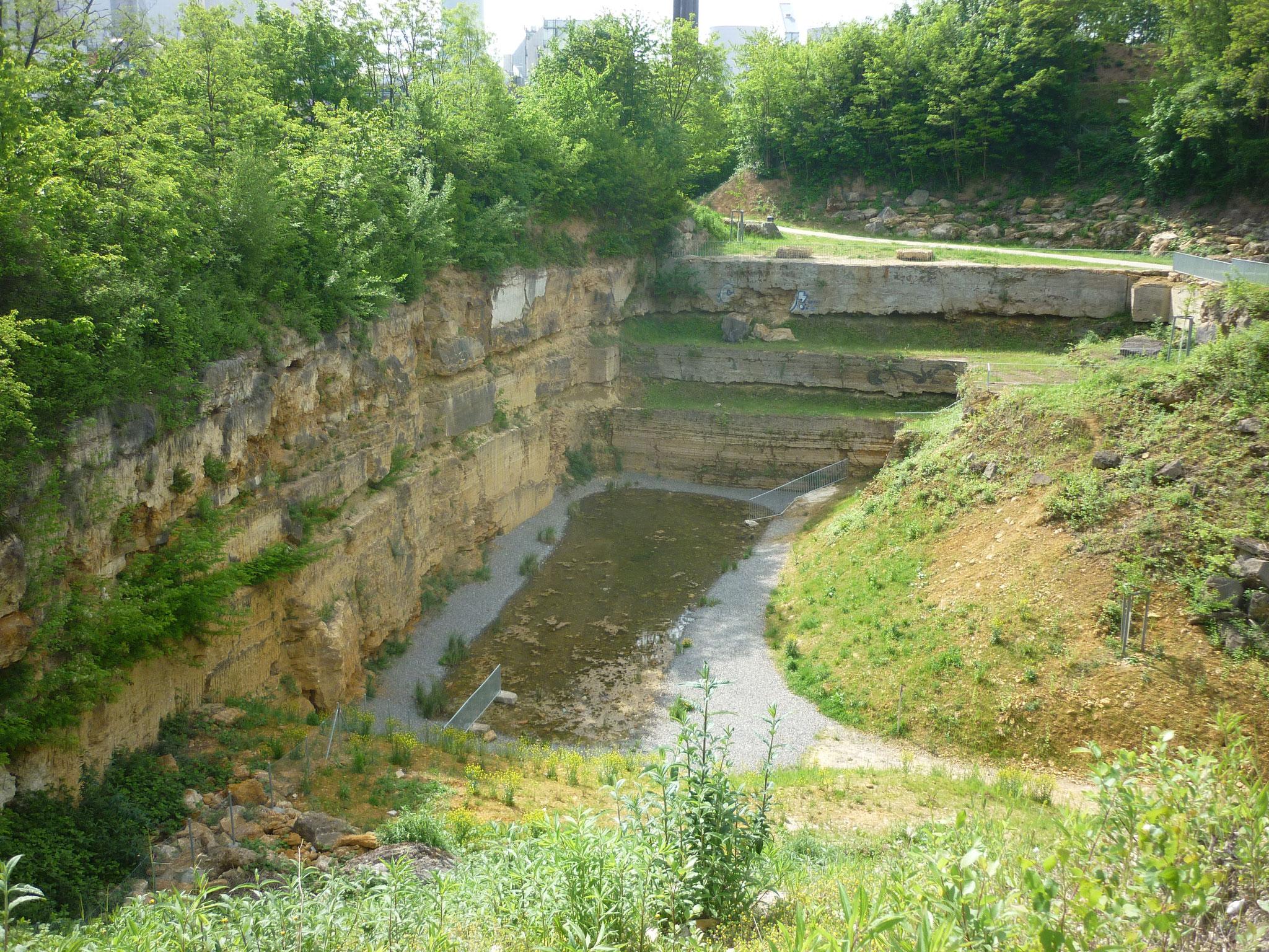 Aus Wasser wird Stein - Cannstatter Travertin