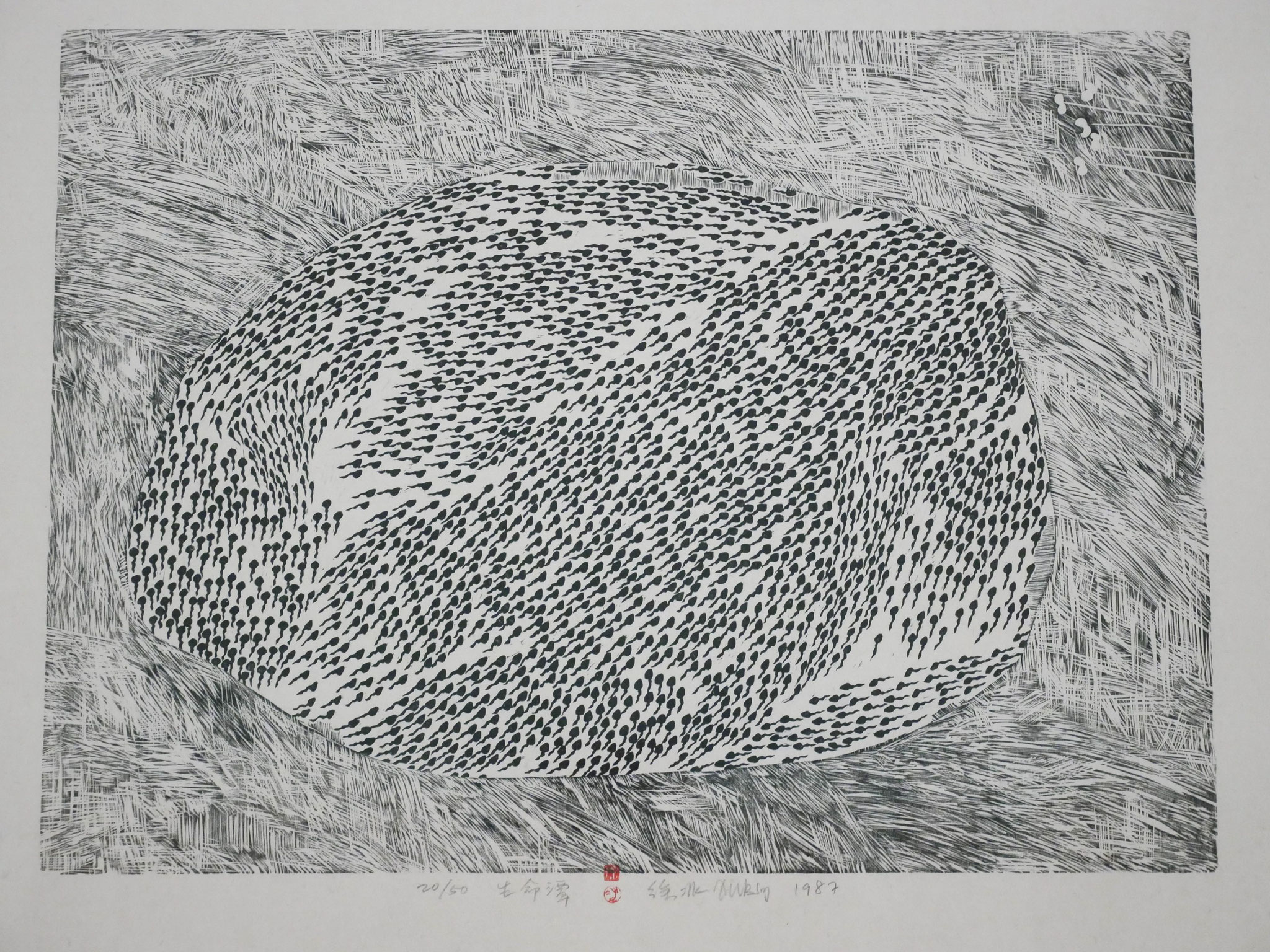 Xu Bing, Life Pond from Series of Repetitions, 1987