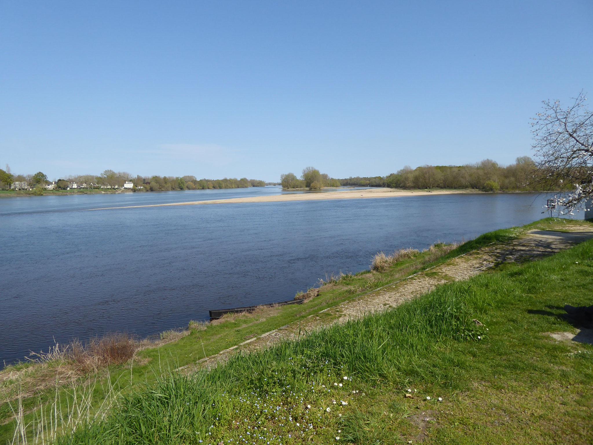 Confluent Vienne-Loire à Candes