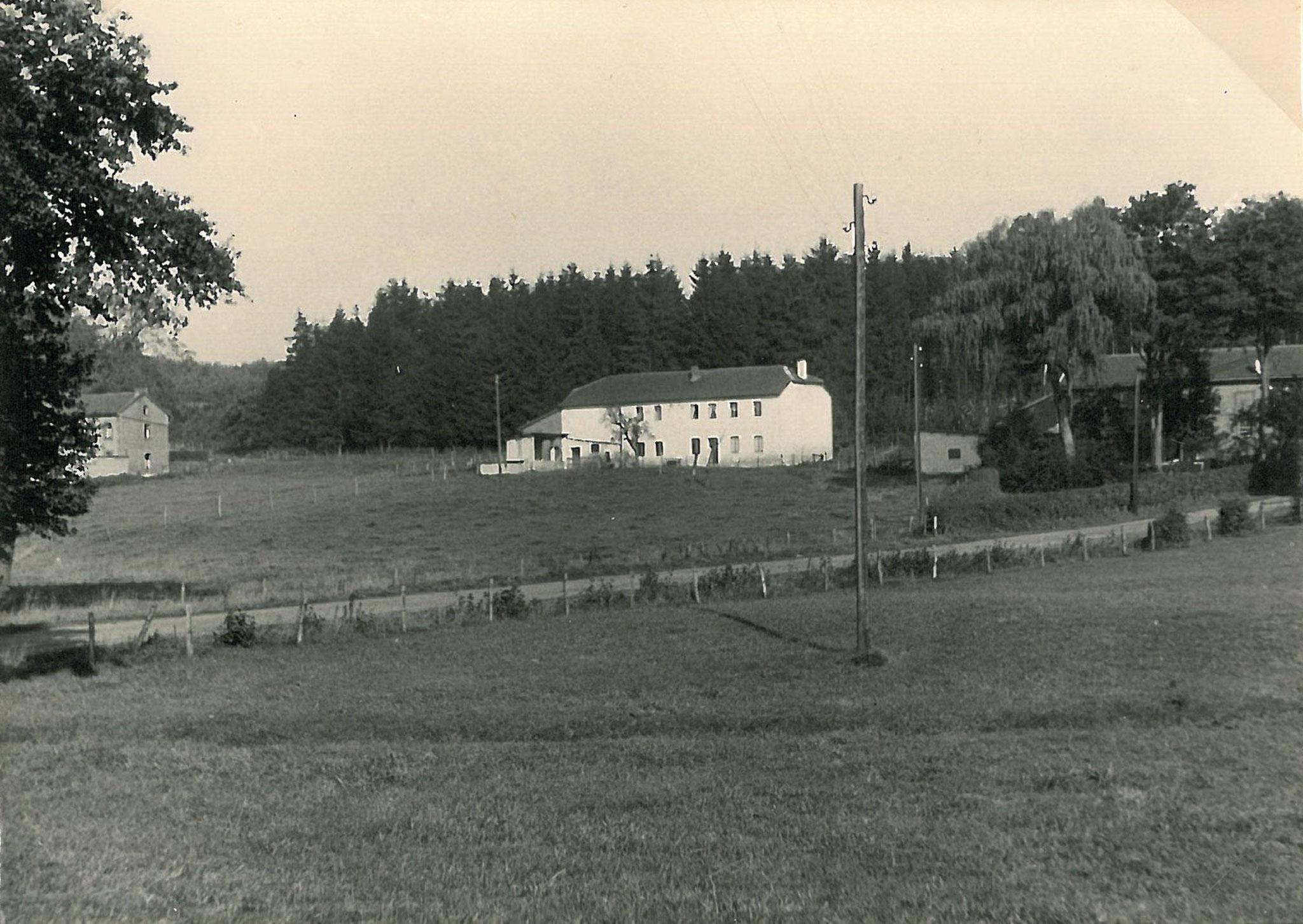 Haus Falkenstein Martin - Flög